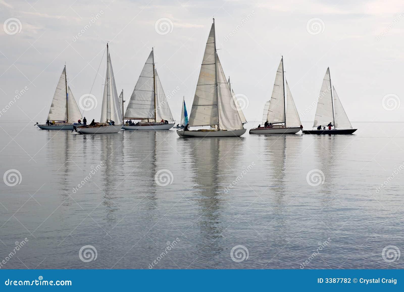 Barche a vela in acqua calma
