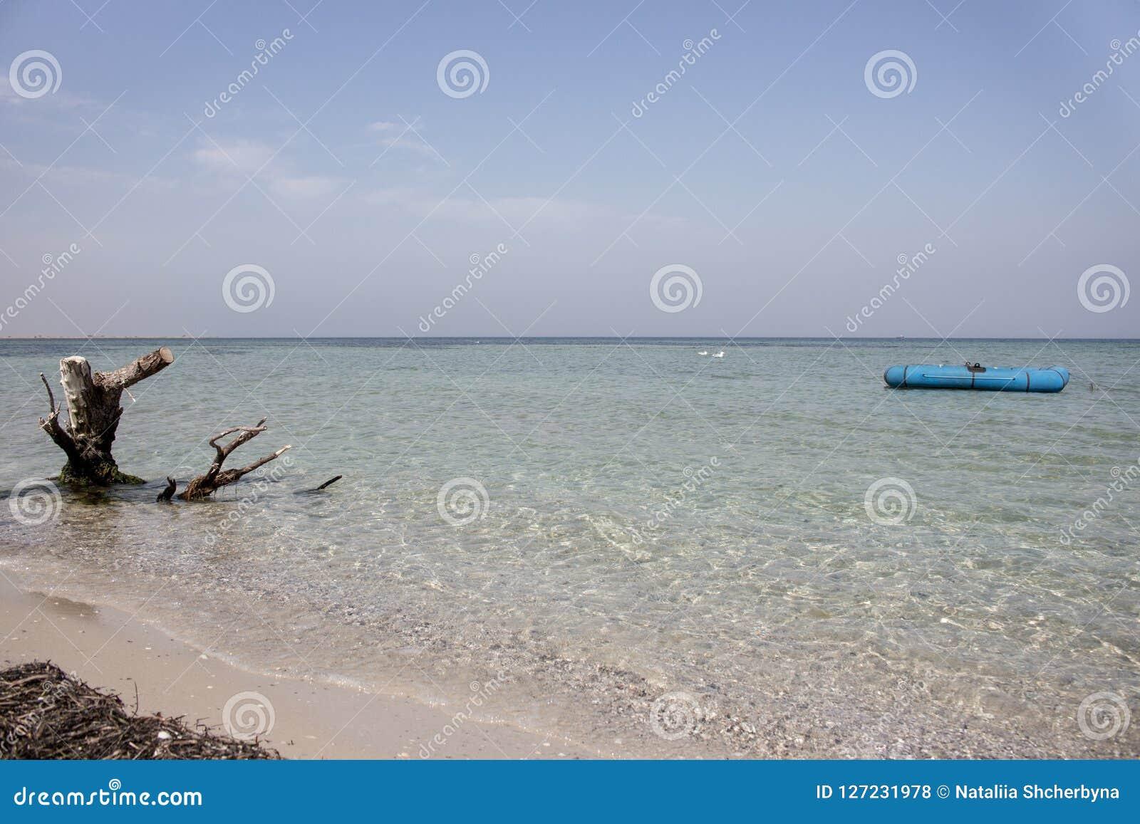 Barco de borracha azul, gaivotas de assento e senão resistida no mar calmo Férias e conceito tropicais do paraíso Fundo do Seasca