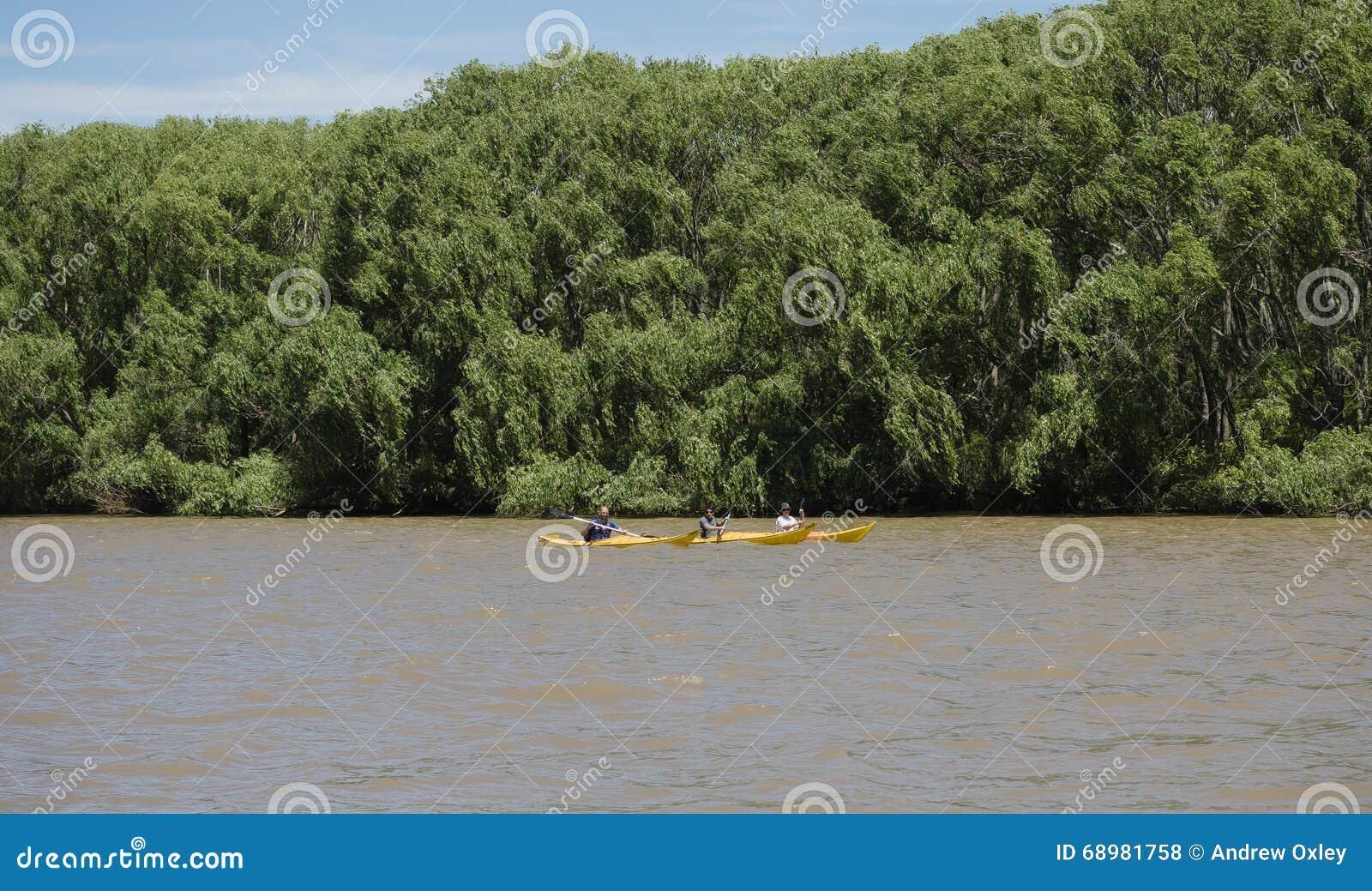 Barco en el delta de la placa del río, la Argentina