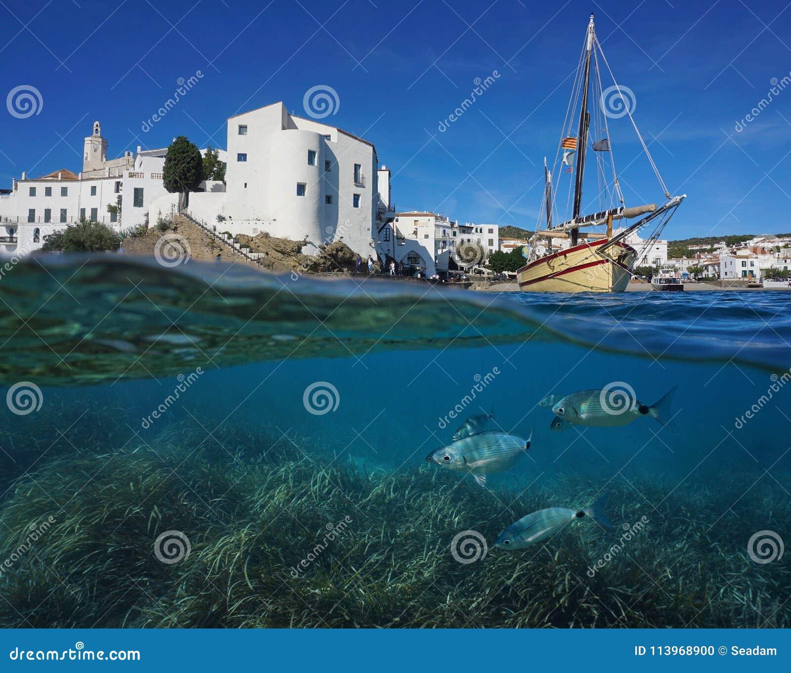 Barco litoral da vila com a Espanha subaquática dos peixes