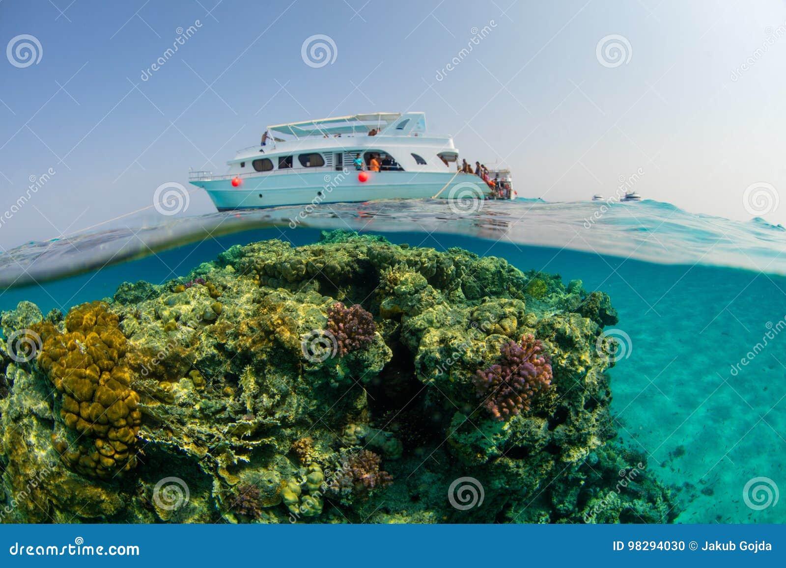 Barco pequeno do safari com os snorkelists prontos para saltar na água