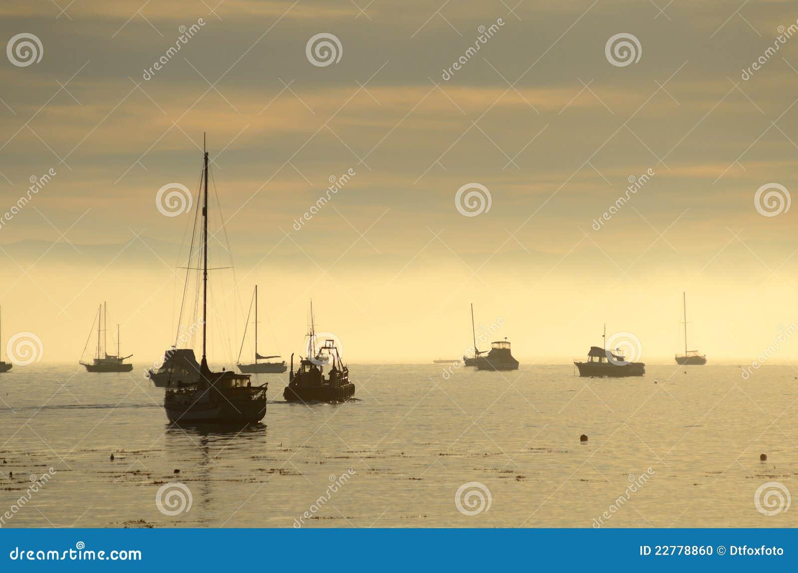 Barcos de Pismo