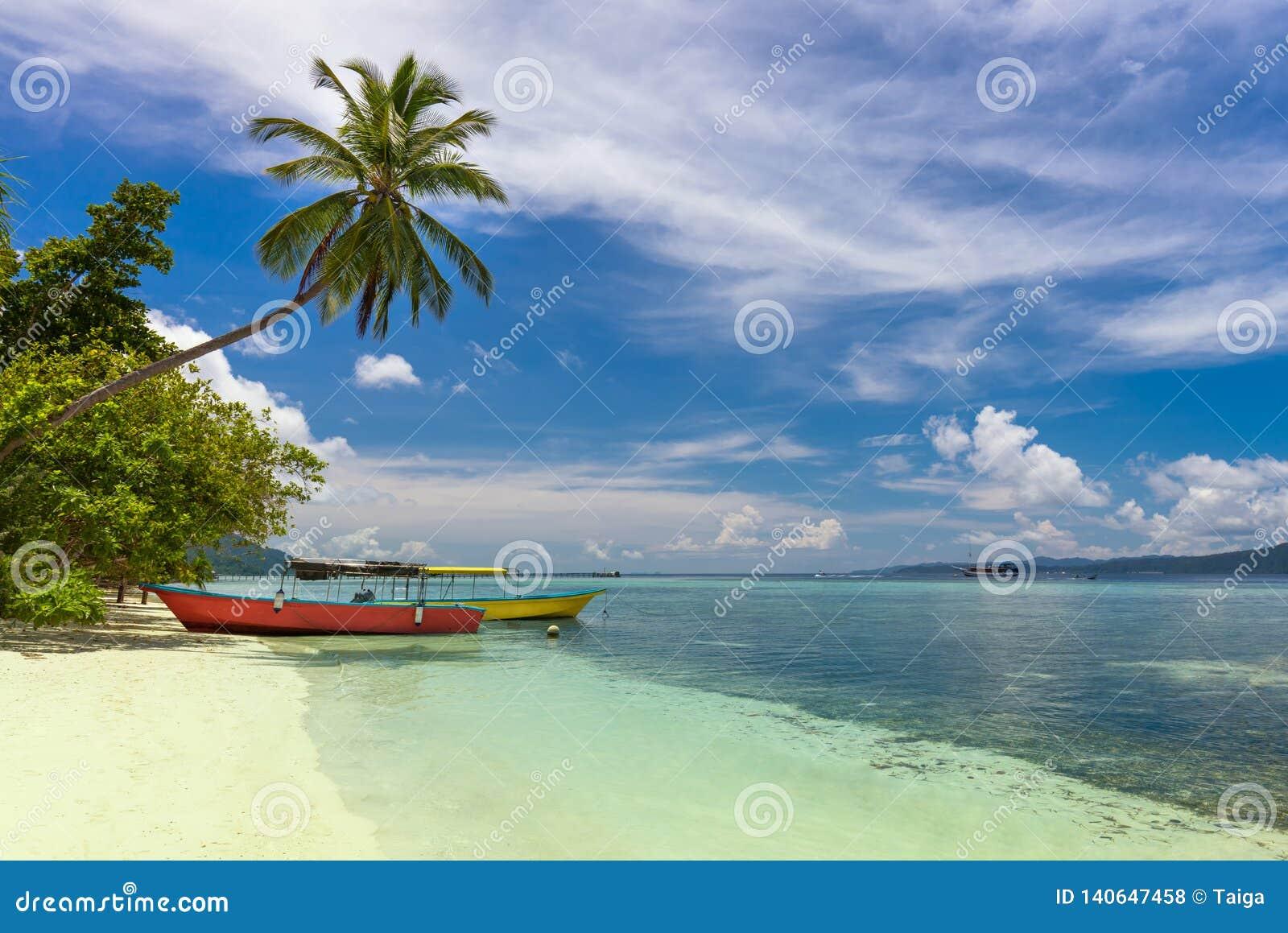 Barcos locais de duas cores na costa da ilha, na praia tropical com palma de coco, na areia branca e na água de turquesa