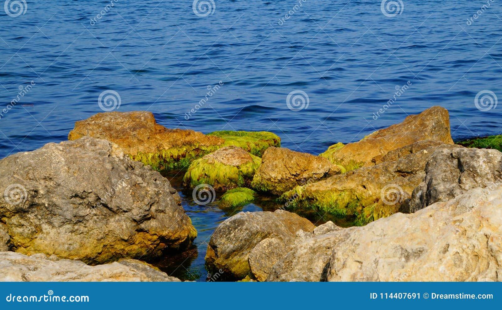 Bardzo błękitny Czarny morze