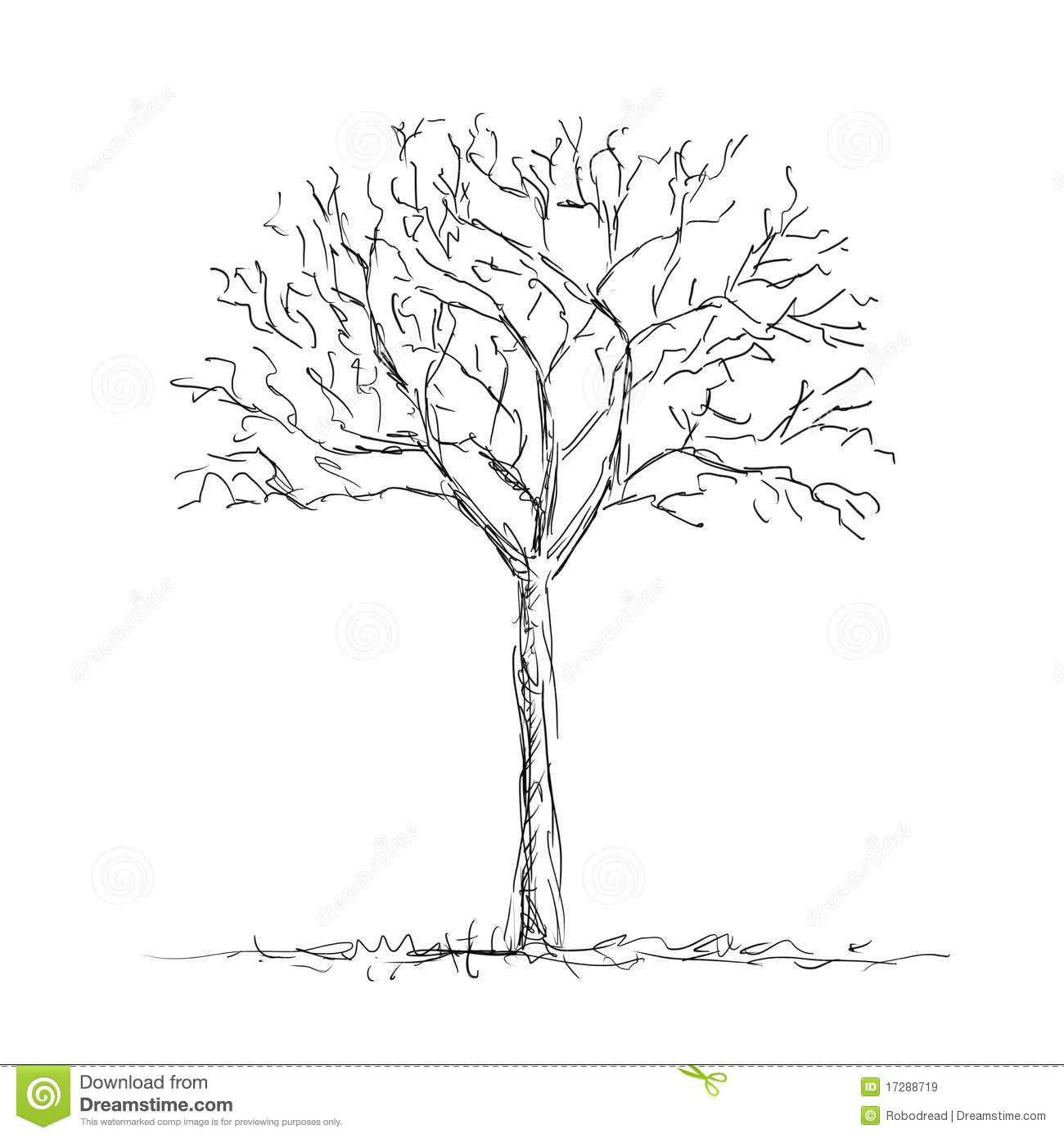 Leafless Tree Line Drawing Galleryhipcom The Hippest