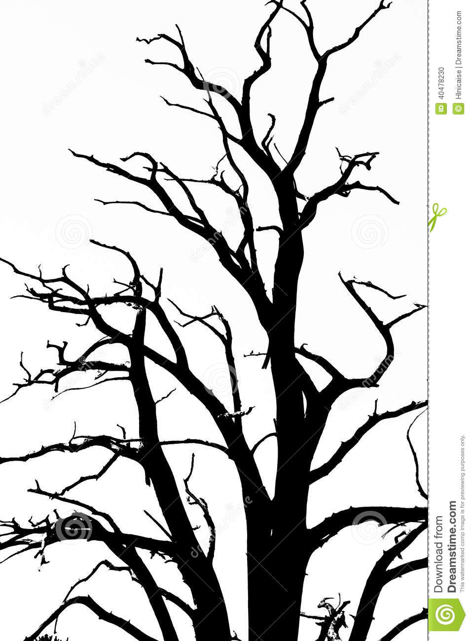 Bare Tree Branches stock photo. Image of black, tree ...