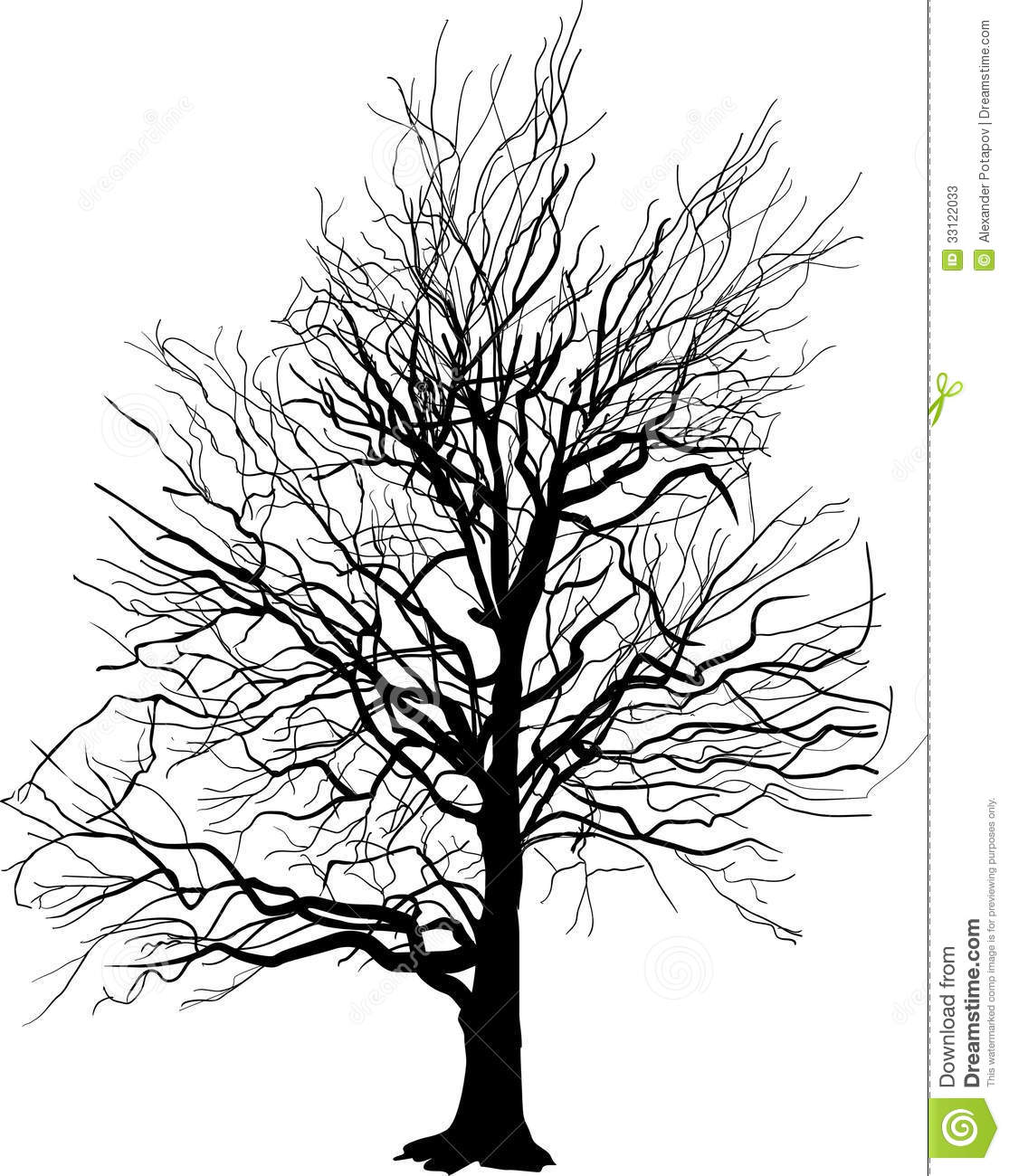 Bare Tree Silhouette Isolated On White Stock Photos Image 33122033