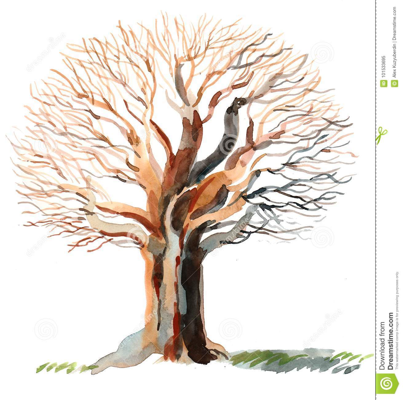 Bare Tree Stock Illustration Illustration Of Grass 101533695