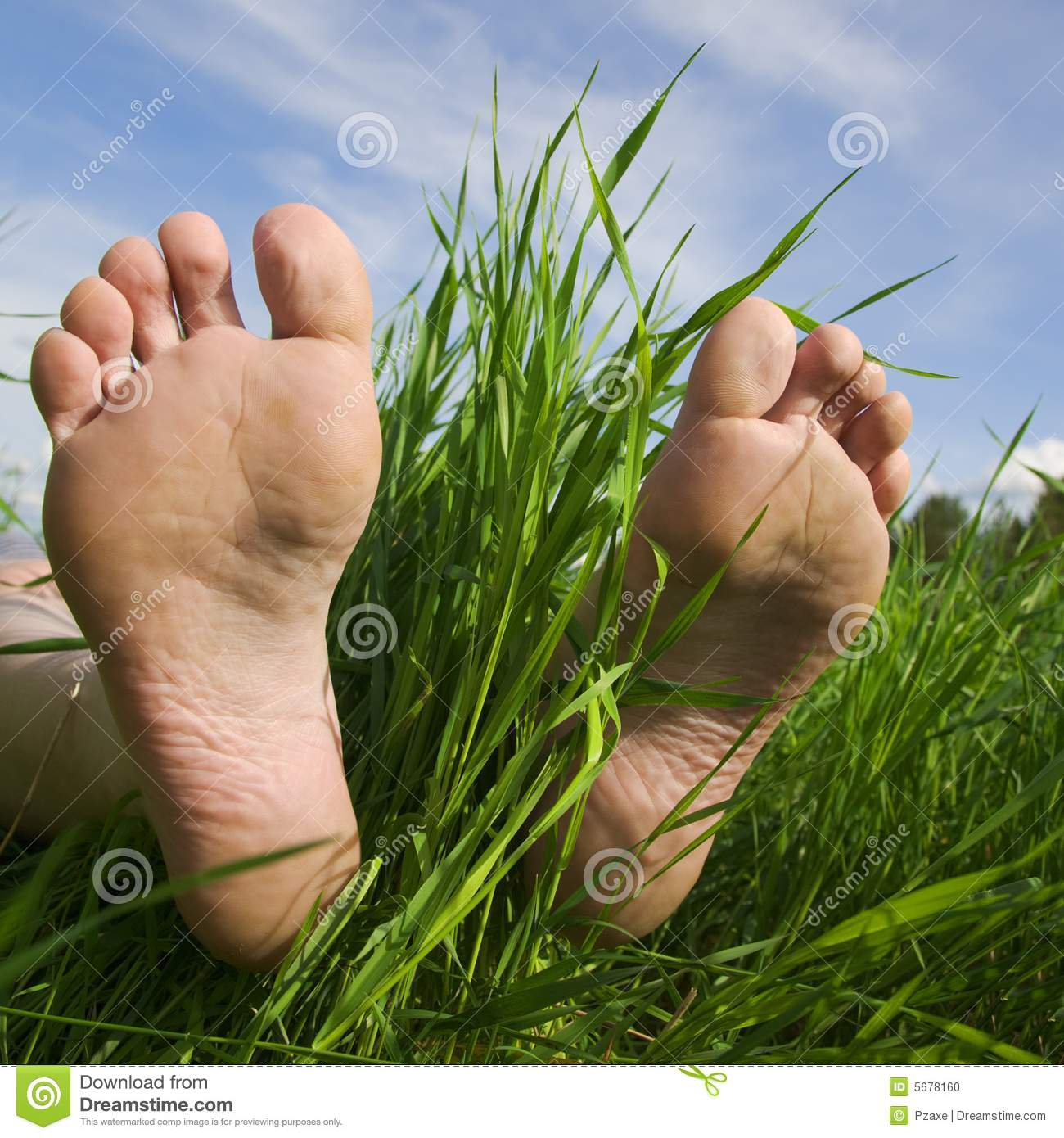 barefooted a foot in a years grass mr no pr no 3 961 6