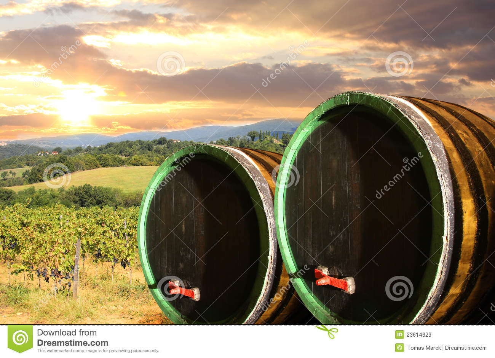Barells κρασί αμπελώνων της Τοσκάνης chianti