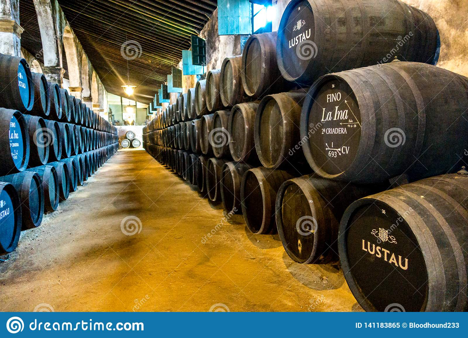 Barilotti dello sherry in un bodega in spagna