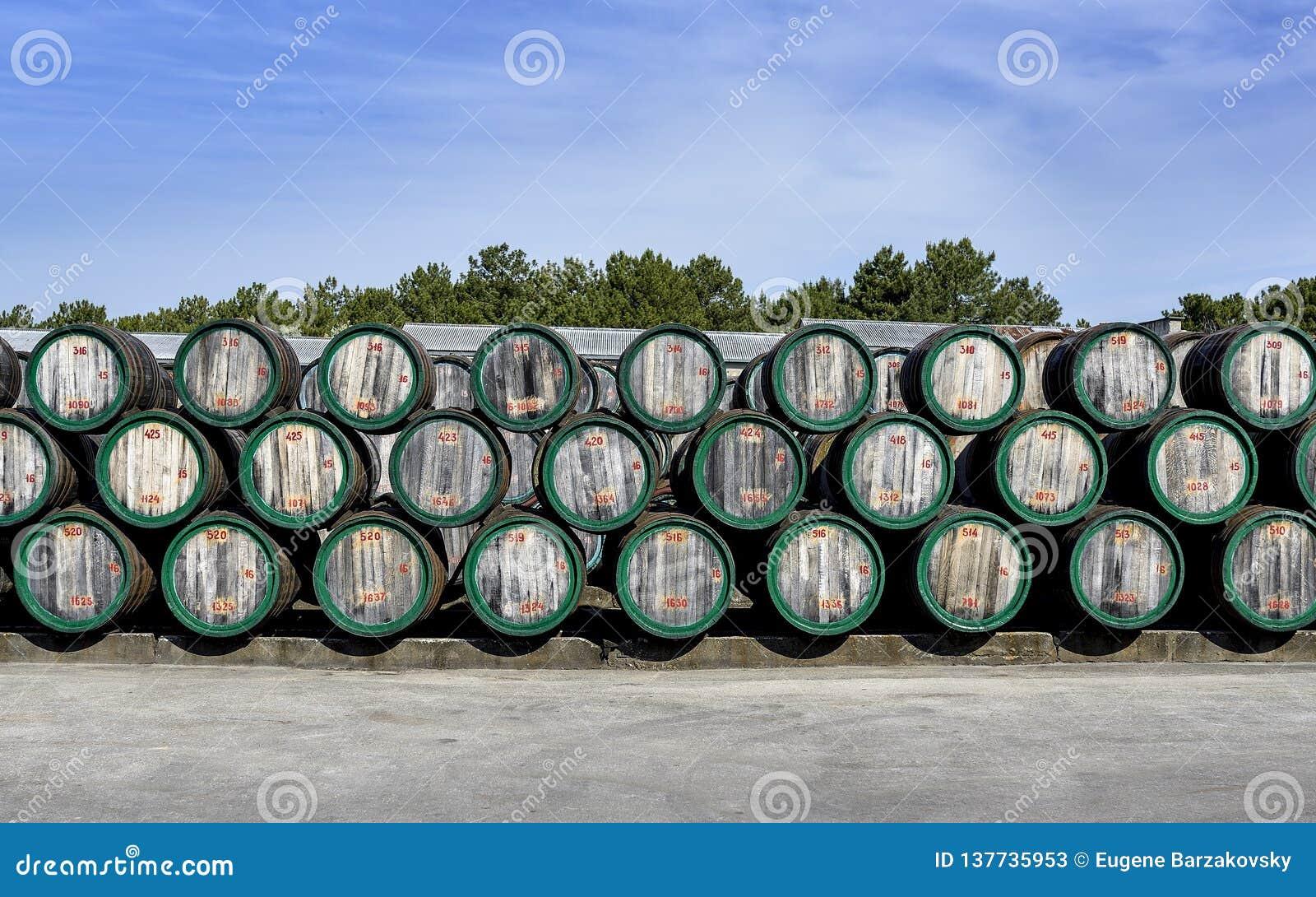 Barils de vin en bois en air ouvert sur la cour d établissement vinicole
