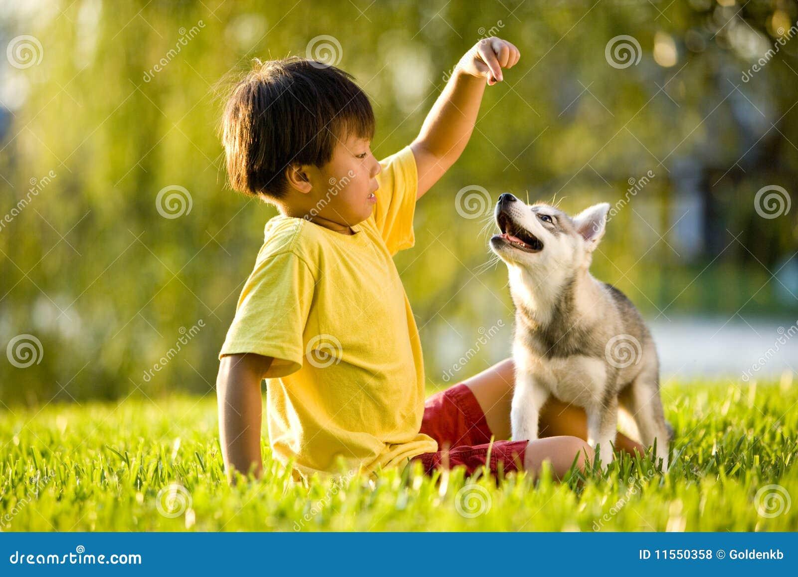 Barn för valp för asiatiskt pojkegräs leka