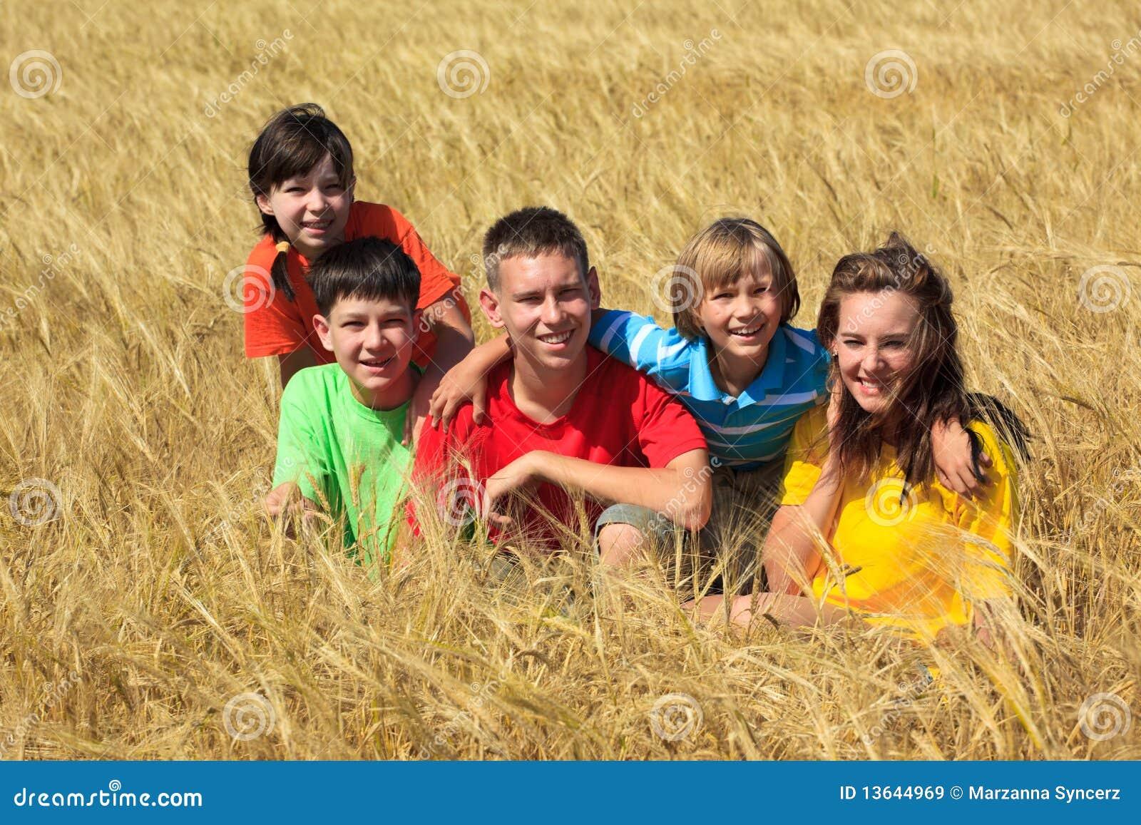 Barn field sittande vete