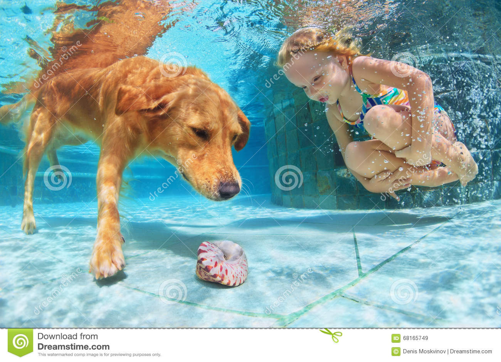 Barn med hunddyken som är undervattens- i simbassäng