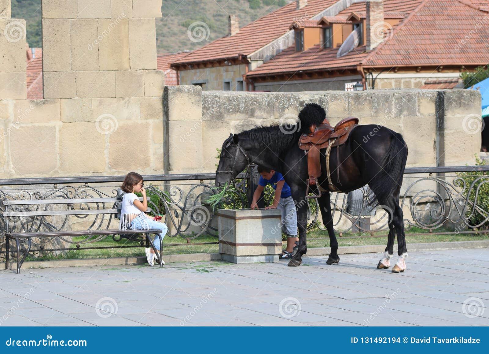 Barn nära svart häst på stenväggen
