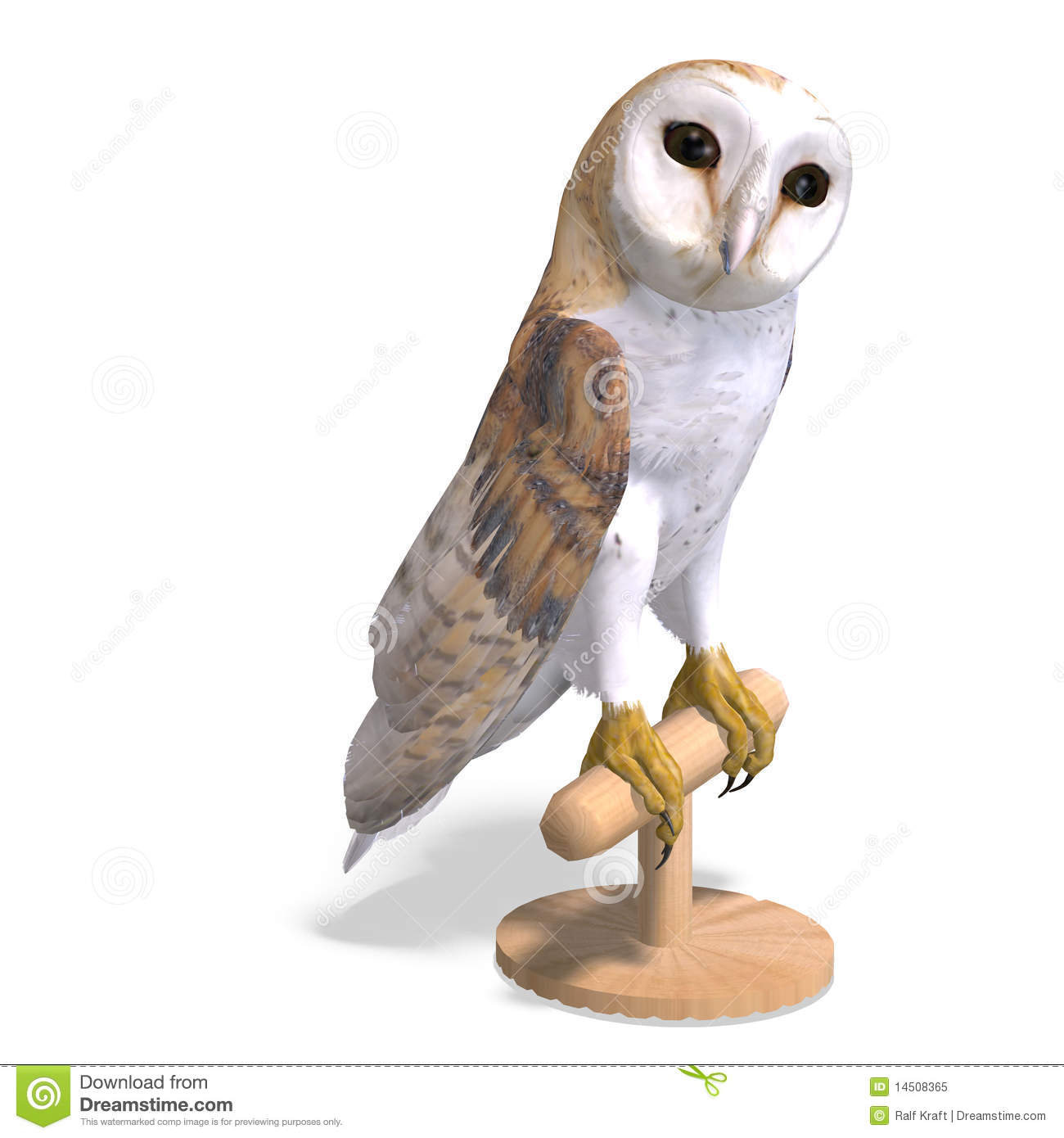 Barn Owl Bird. 3D Rendering With Clipping Path Royalty ... Cute Unicorn Clipart