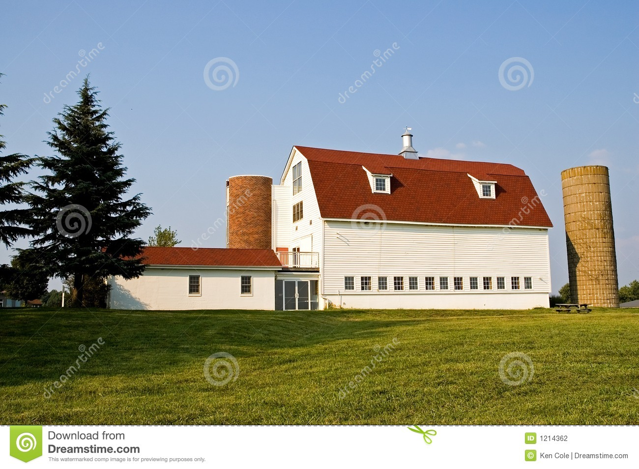 Barn With Red Gambrel Roof And Silos