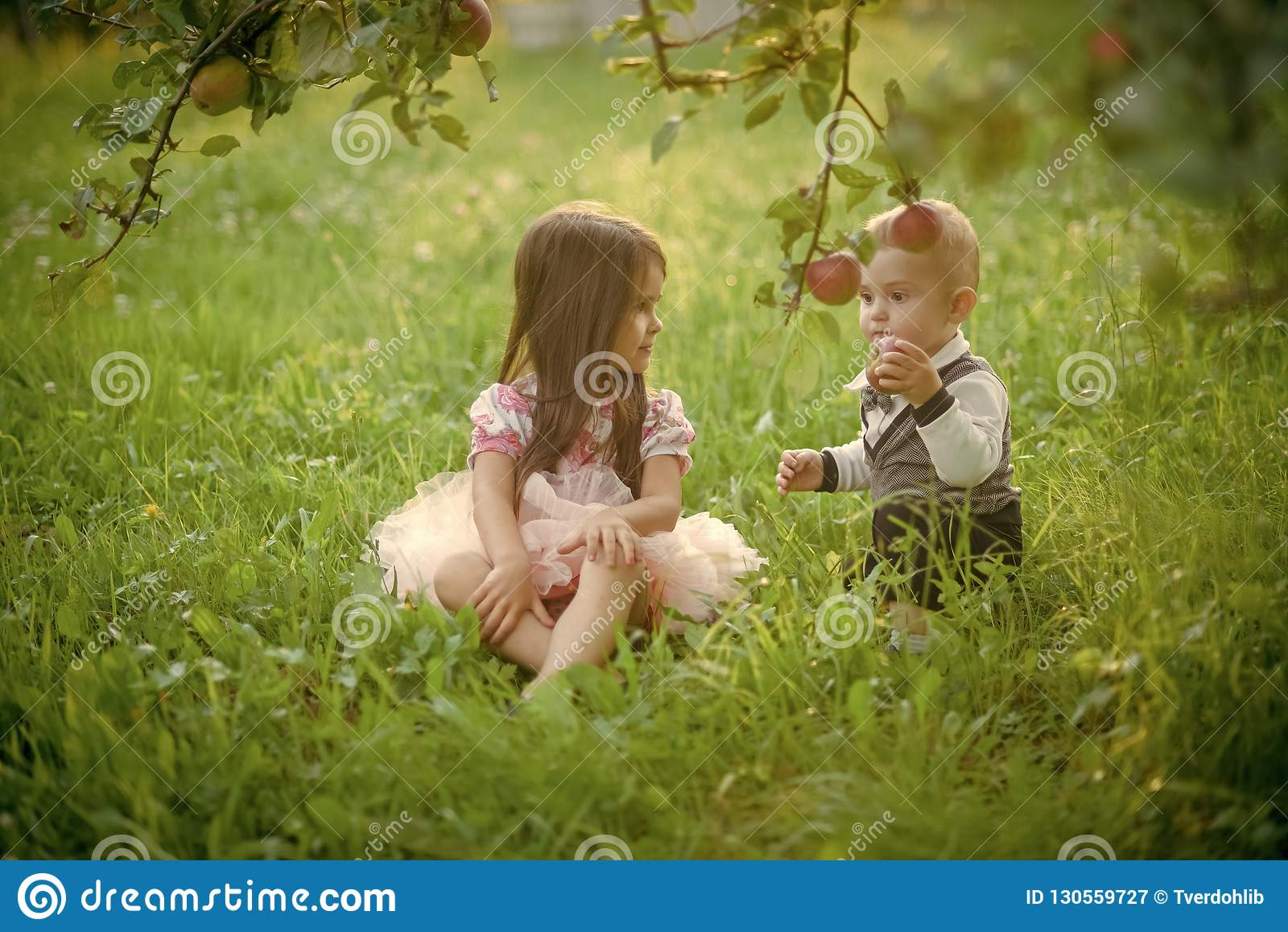 Barn sitter under äppleträd i sommar parkerar