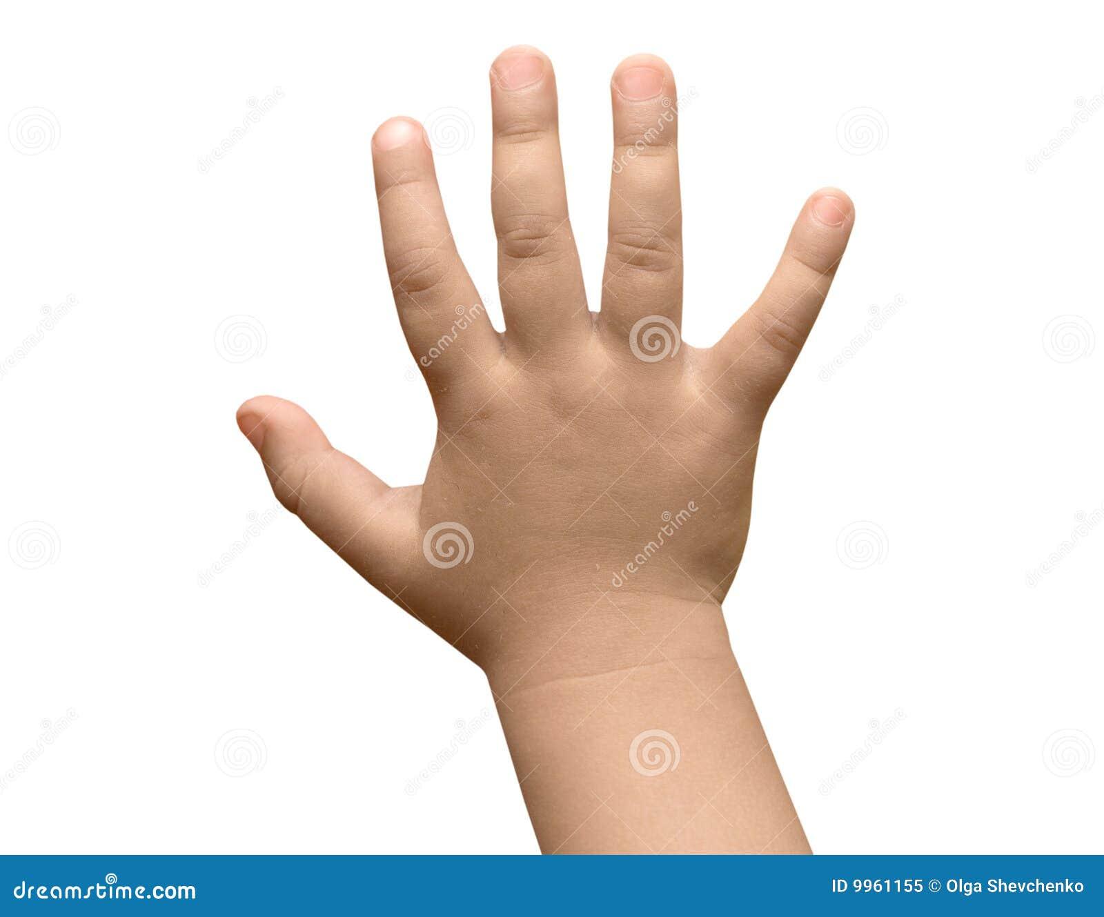 Barnhand