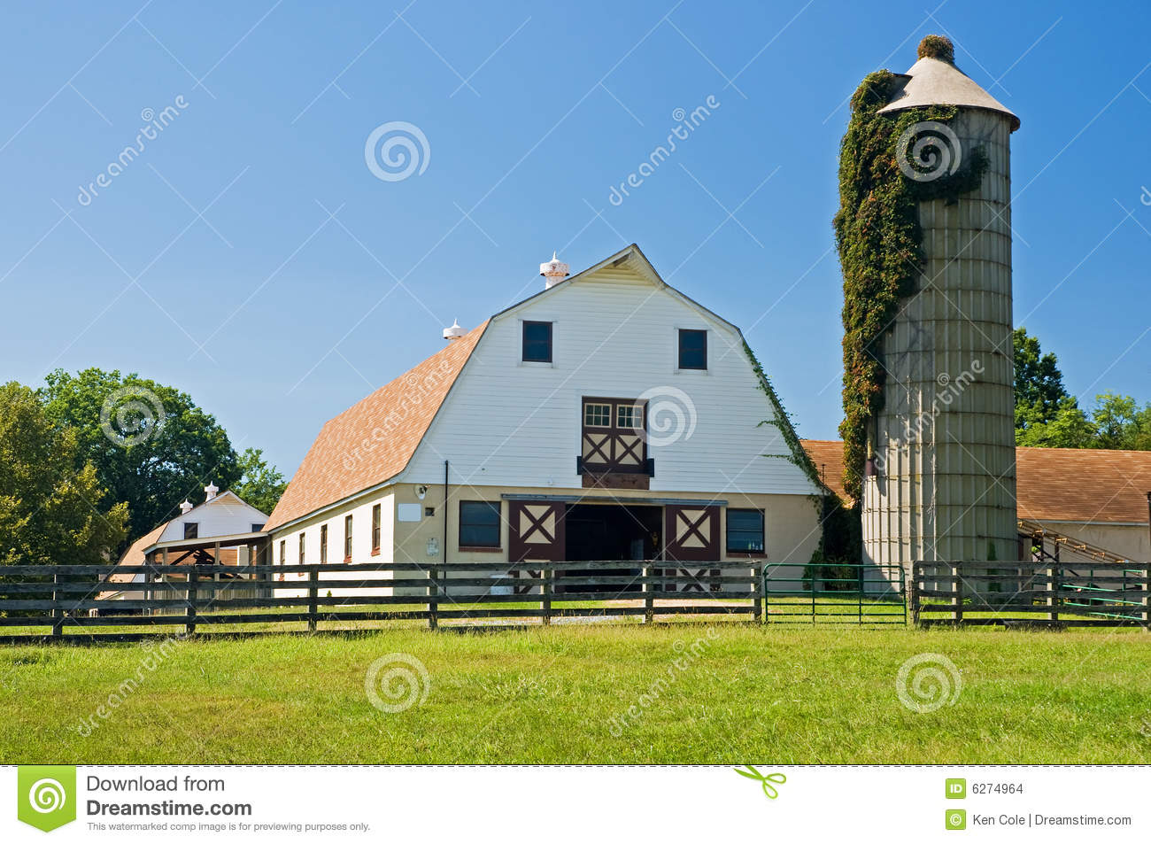 Barns and silo on dairy farm