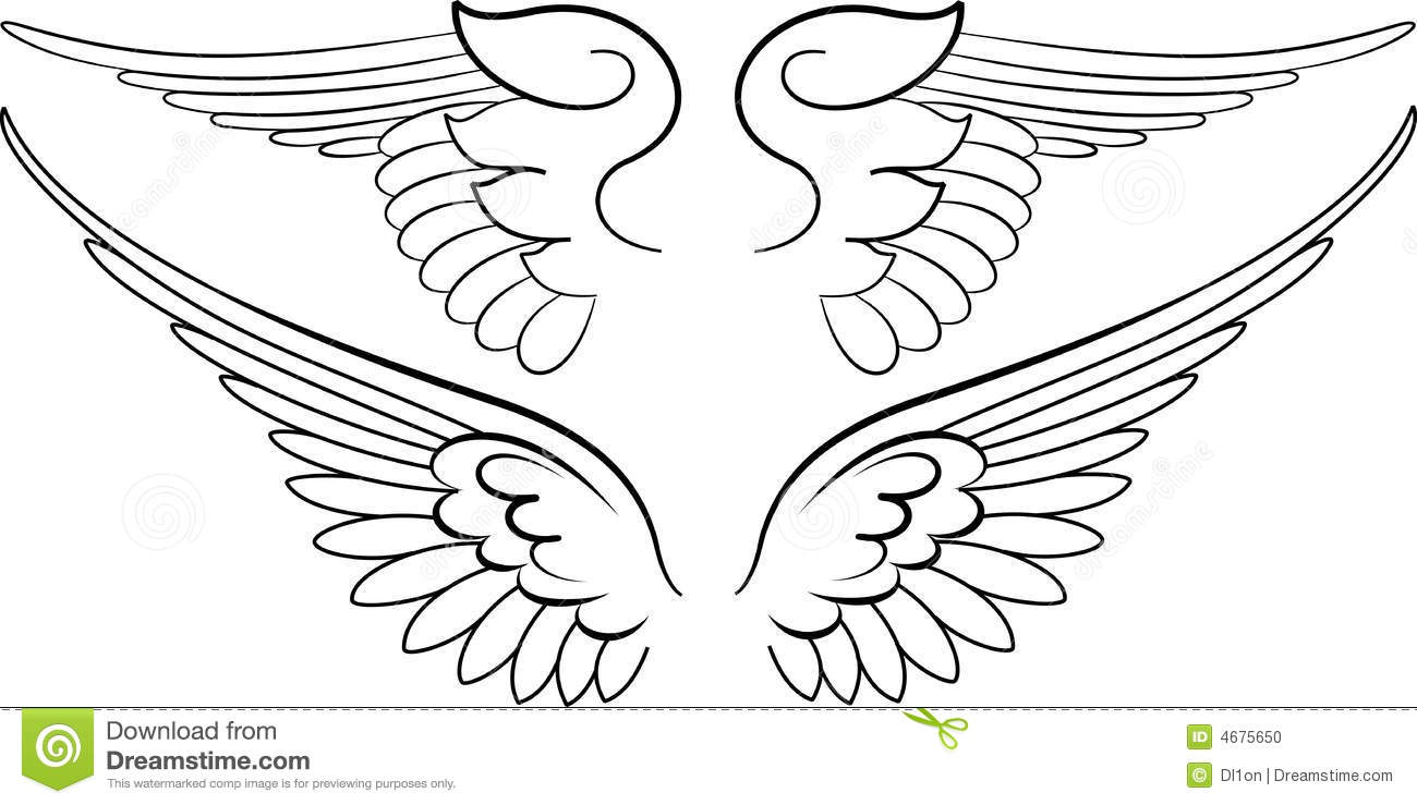 Baroque Wings In Calligraphy Stock Vector Illustration