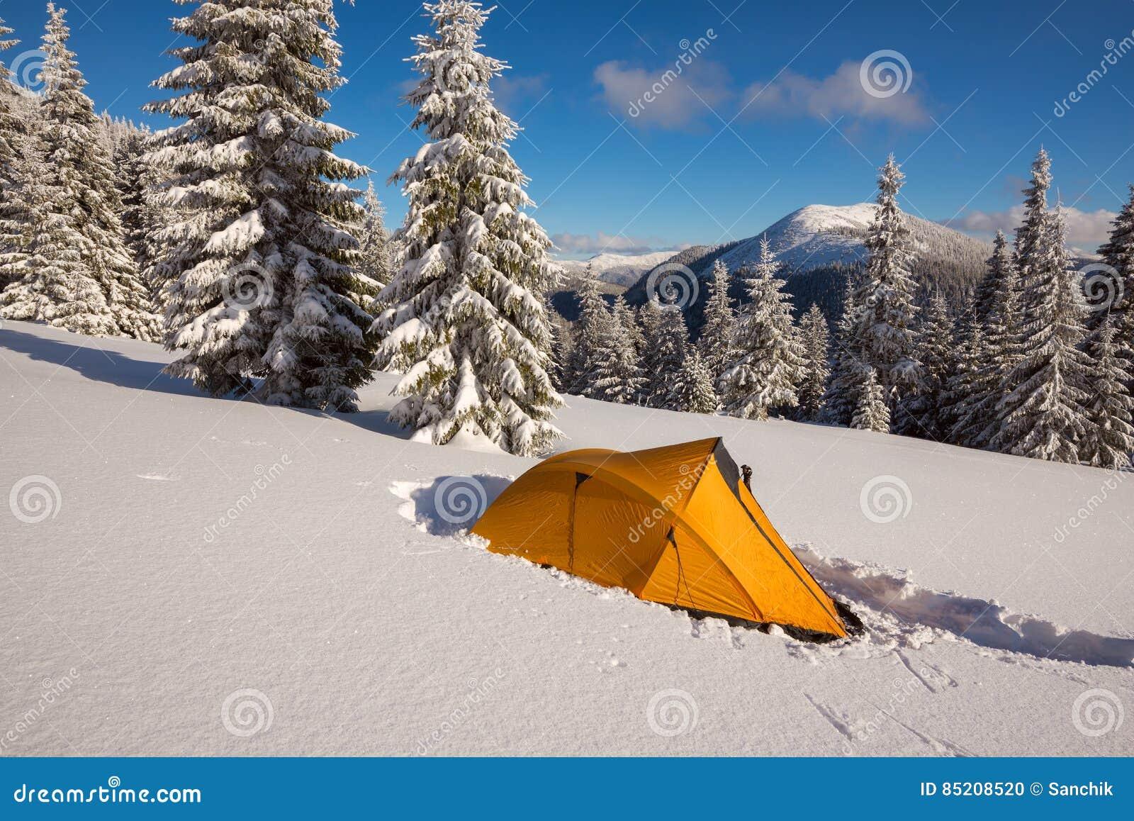 Barraca amarela brilhante no prado alpino entre os abetos cobertos de neve