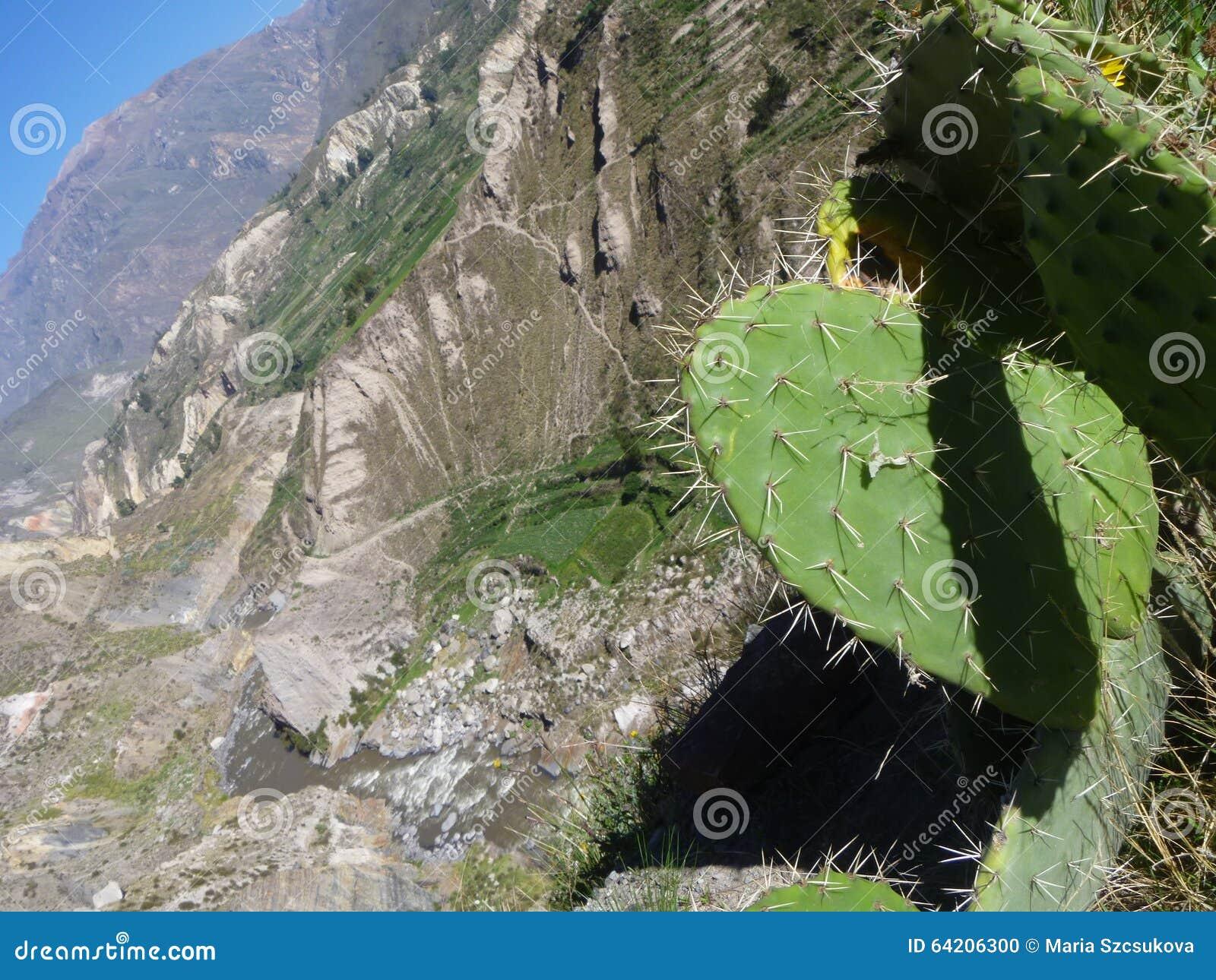 Barranca de Colca, Perú