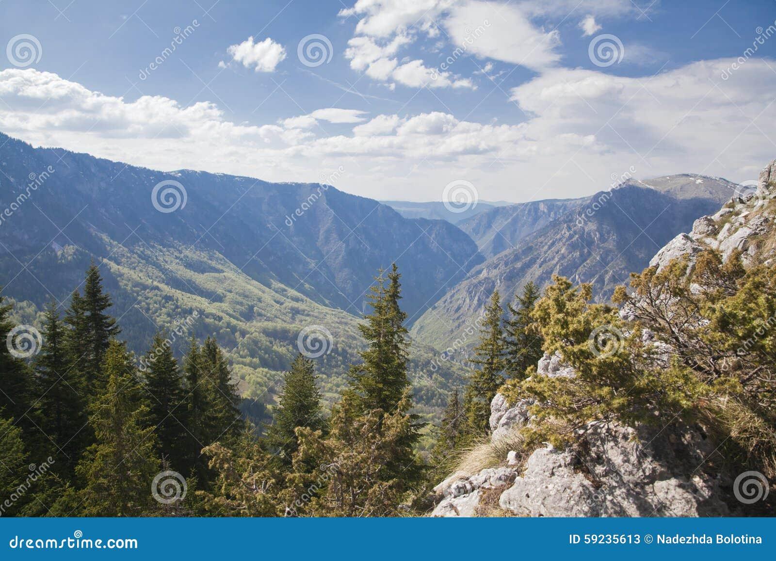 Download Barranco Del Río Tara, Montenegro Imagen de archivo - Imagen de outdoors, horizontal: 59235613