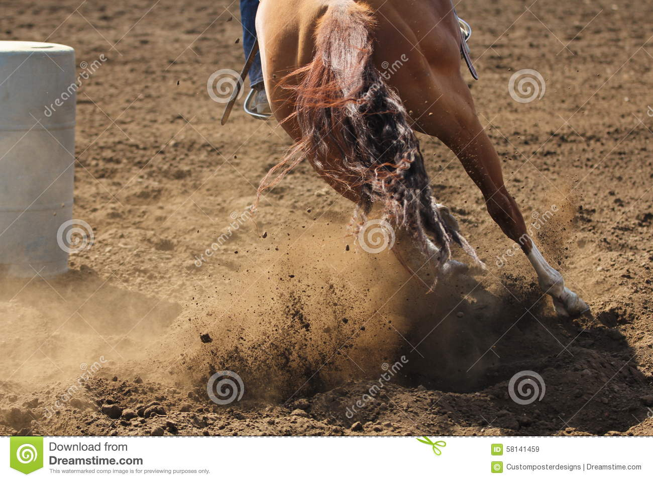 Download A barrel racing horse. stock image. Image of horse, living - 58141459