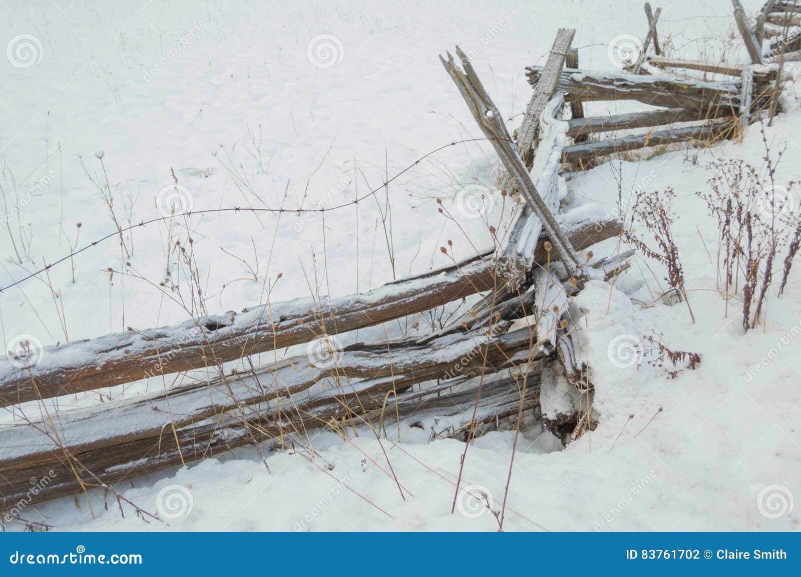 Barrière de rail rustique de cèdre de zigzag avec le saupoudrage de neige