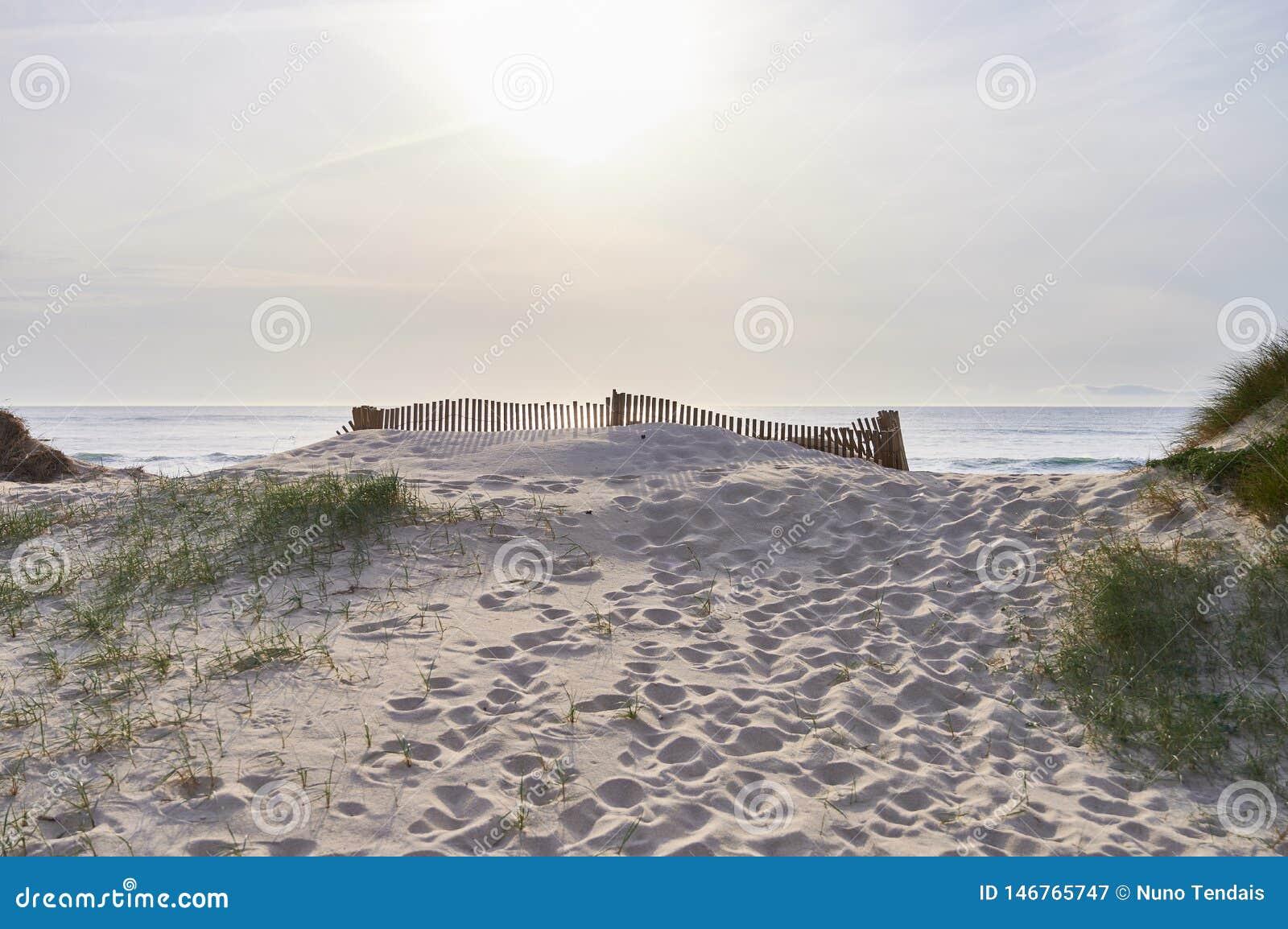 Barrières au-dessus de la dune