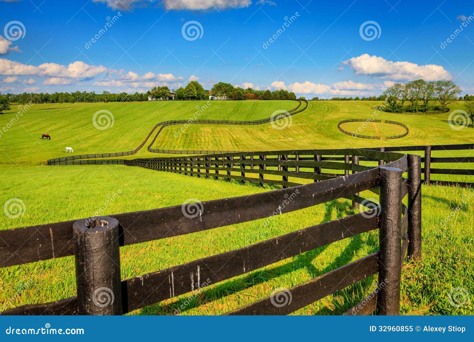 Barrières de ferme de cheval