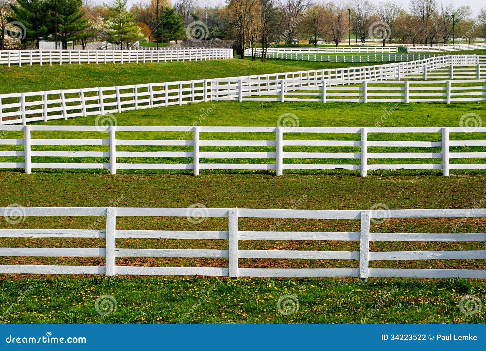 Barrières en abondance