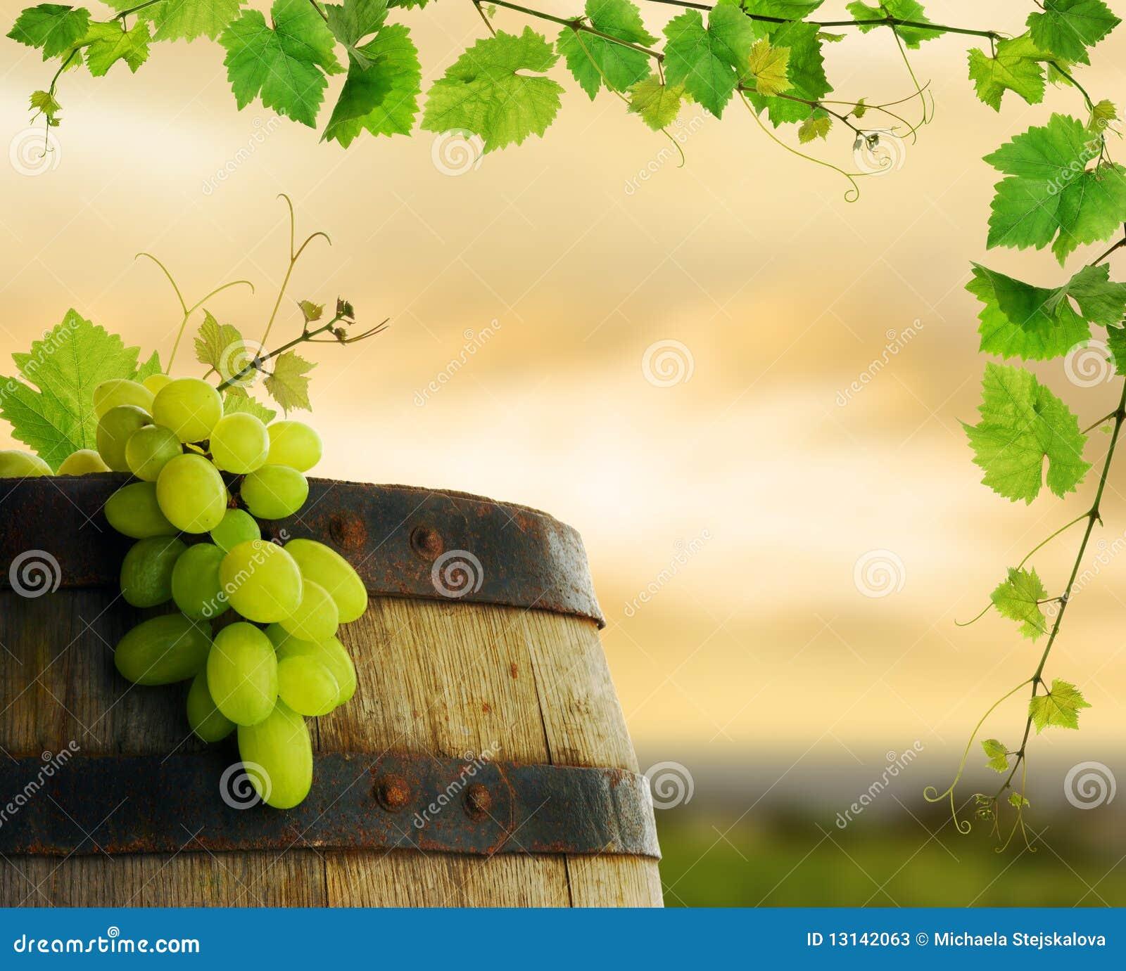 Barril de vino con la uva y la vid fotos de archivo - Barril de vino ...