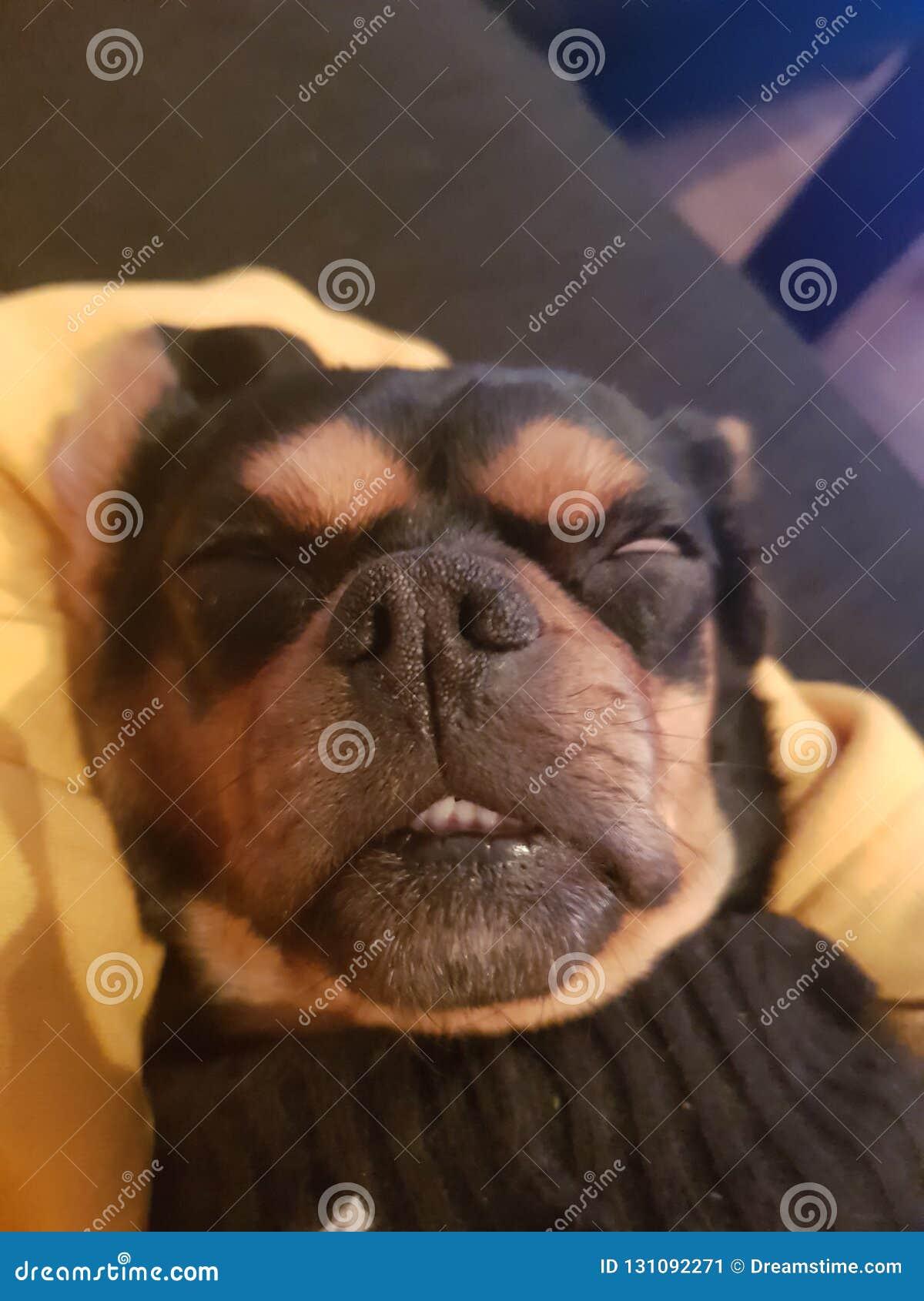 Barro amasado soñoliento