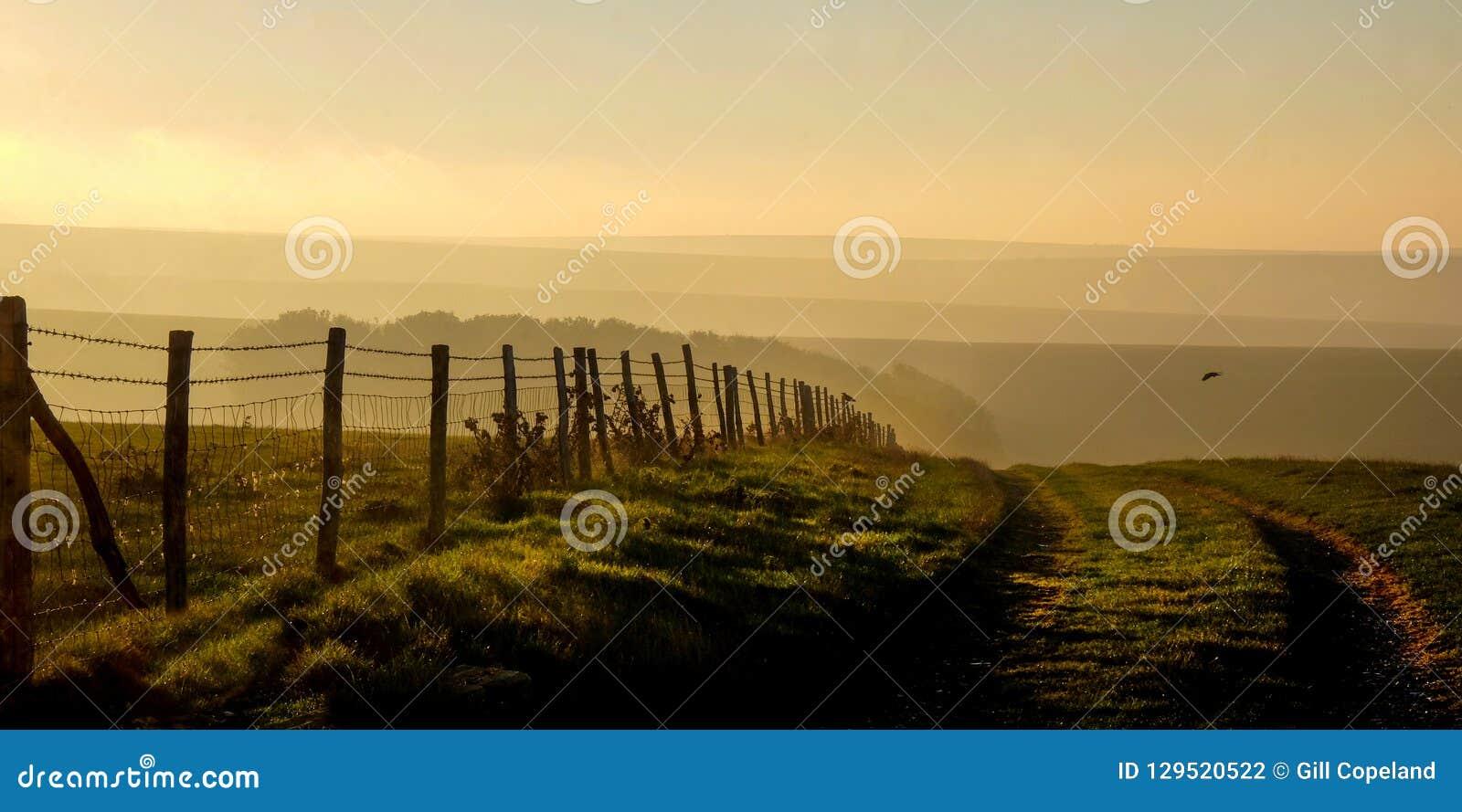 Bas du sud, East Sussex, R-U, une voie de ruelle de pays menant dans