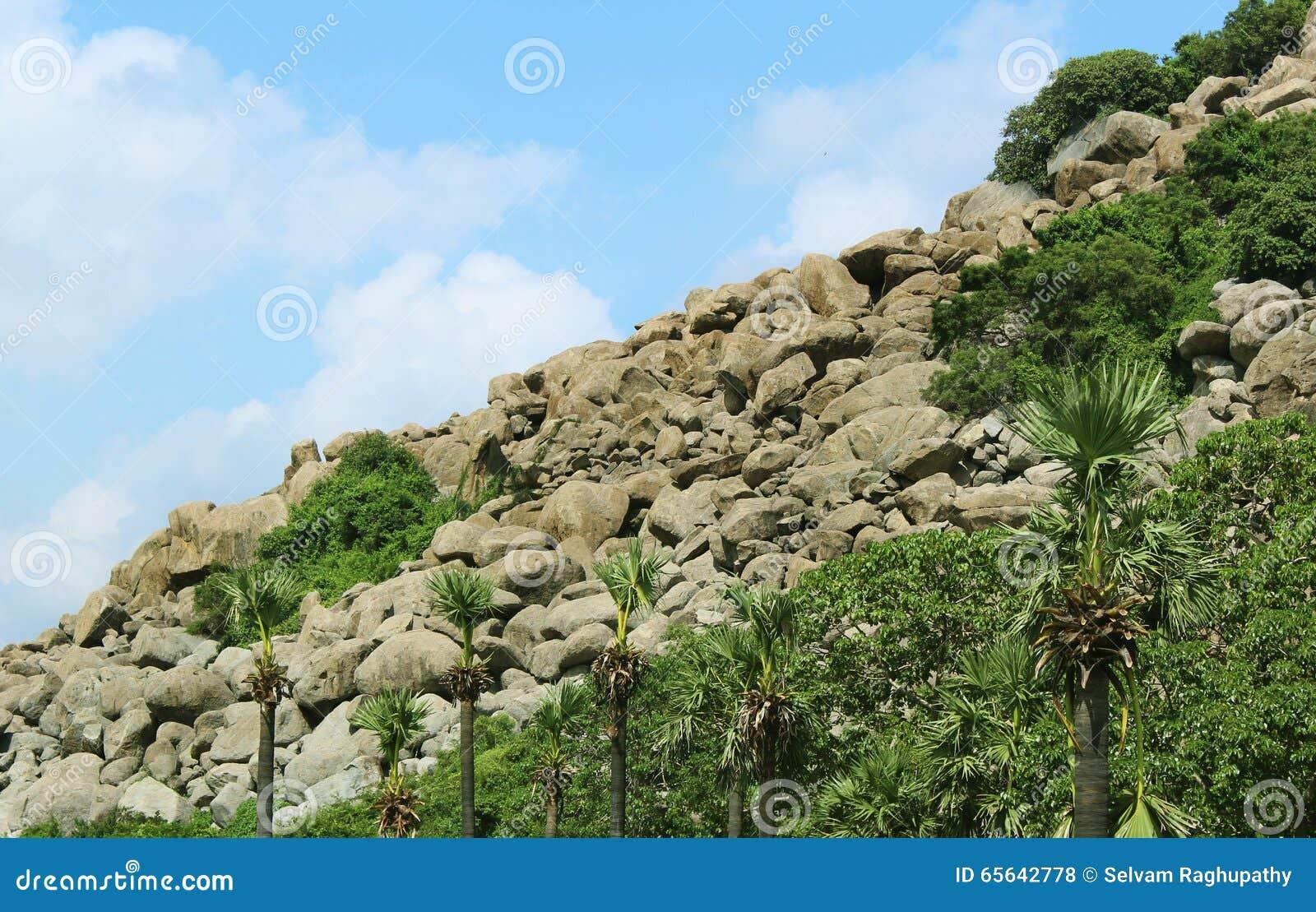 Bascule le paysage de colline