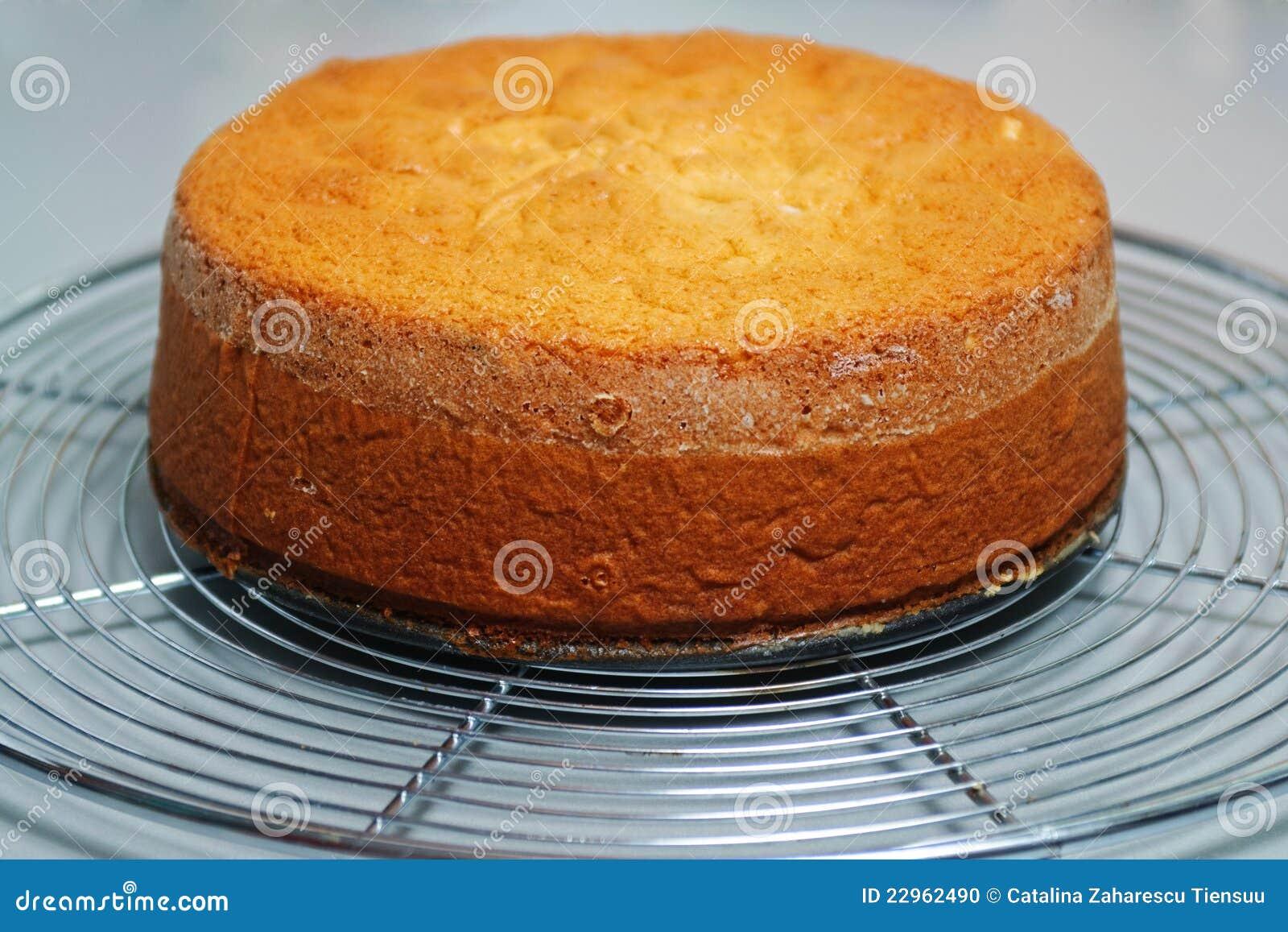 Base della torta dello zenzero