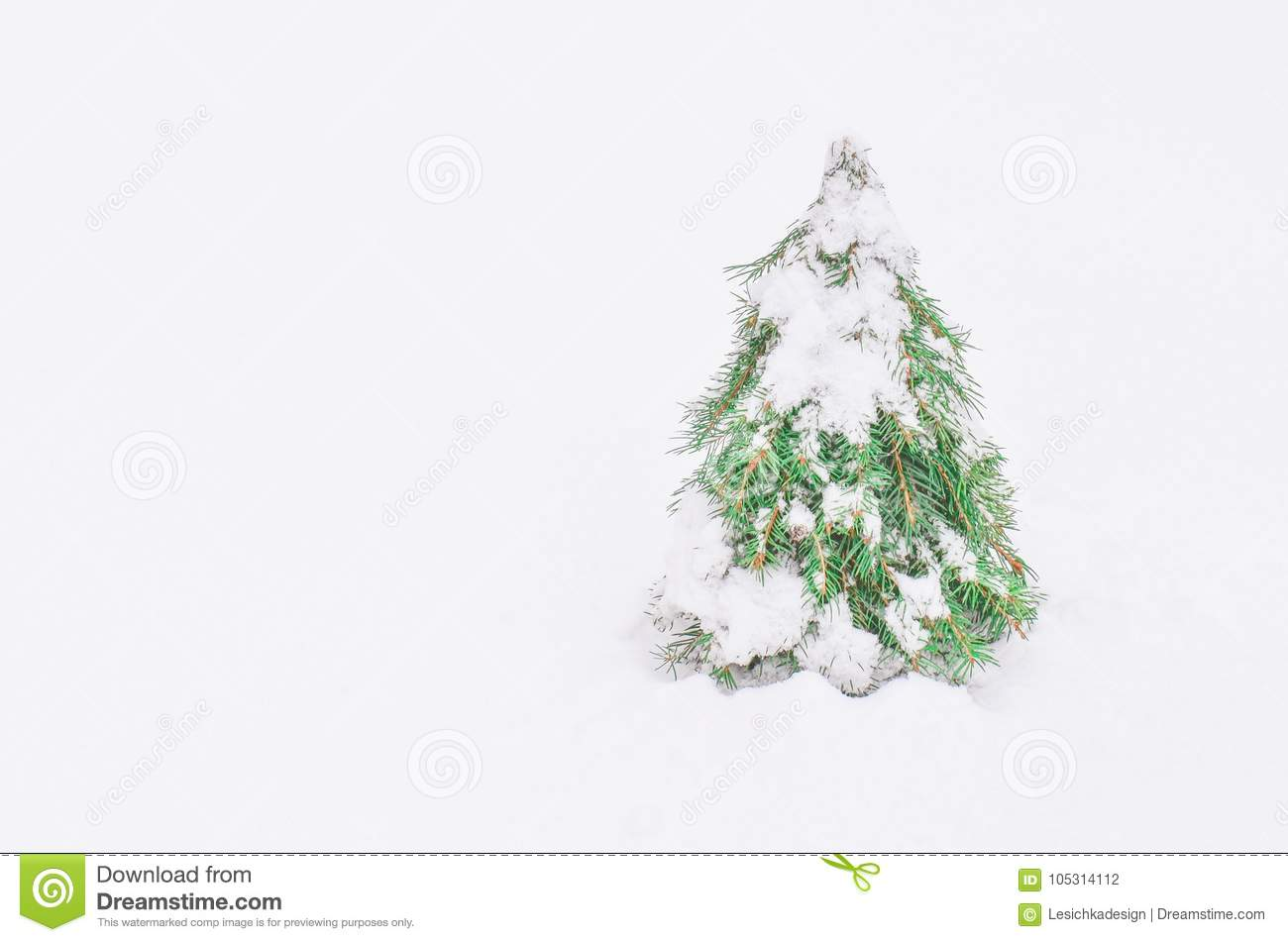 The Base Of The Styrofoam Cone Will Be Cover Fir Tree Branches Stock Photo Image Of Decor Handmade 105314112