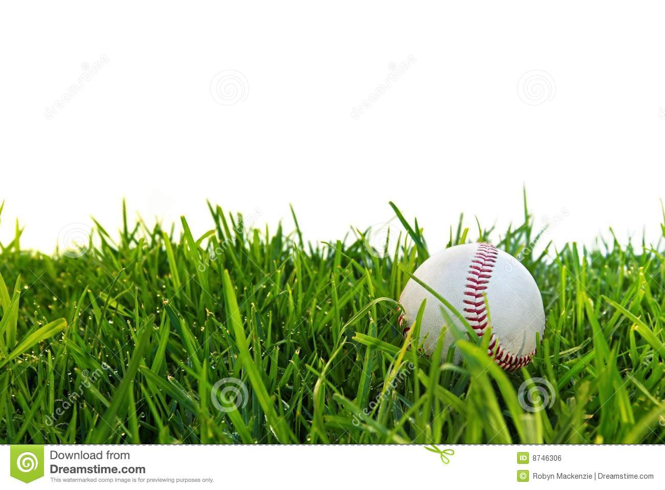 Baseball powerpoint template free7 smartart powerpoint templates baseball in dewy grass stock photo image of dewy sport 8746306 alramifo Images