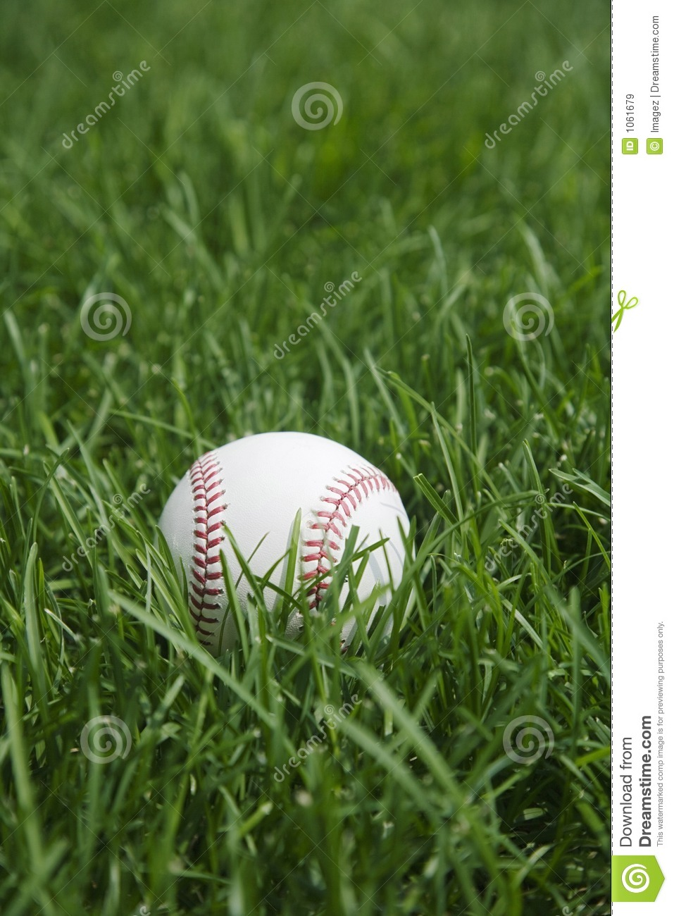 Baseball Grass Stock Image Image Of Hidden Close Gone
