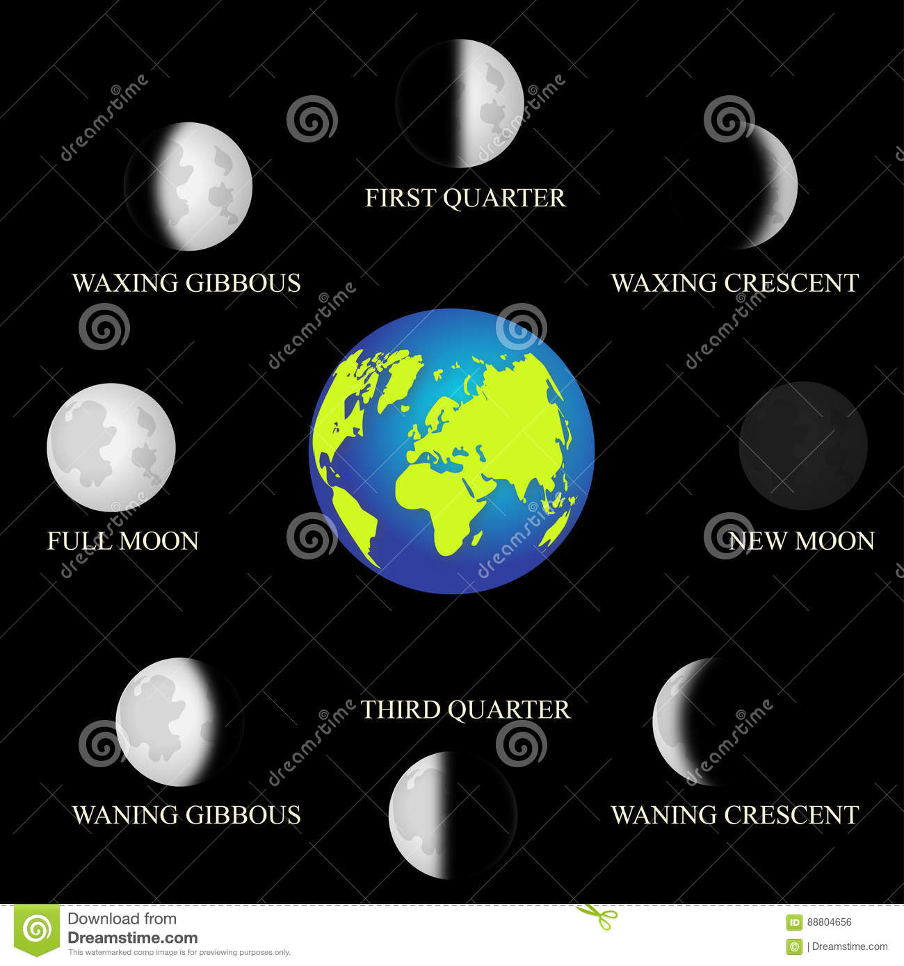 Basic phases of the moon stock vector illustration of first basic phases of the moon pooptronica Choice Image