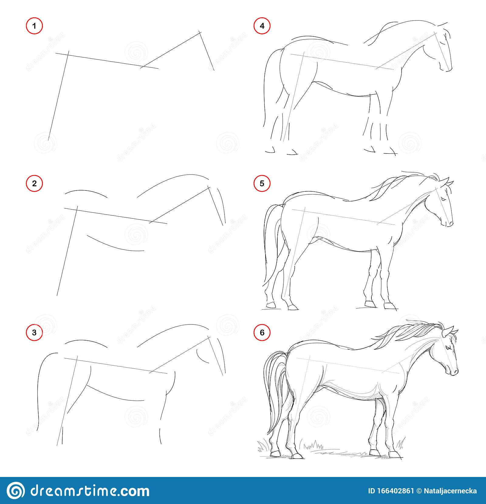 How To Draw From Nature Sketch Of Standing Horse Creation Step By Step Pencil Drawing Educational Page For Artists Stock Vector Illustration Of Drawing Black 166402861