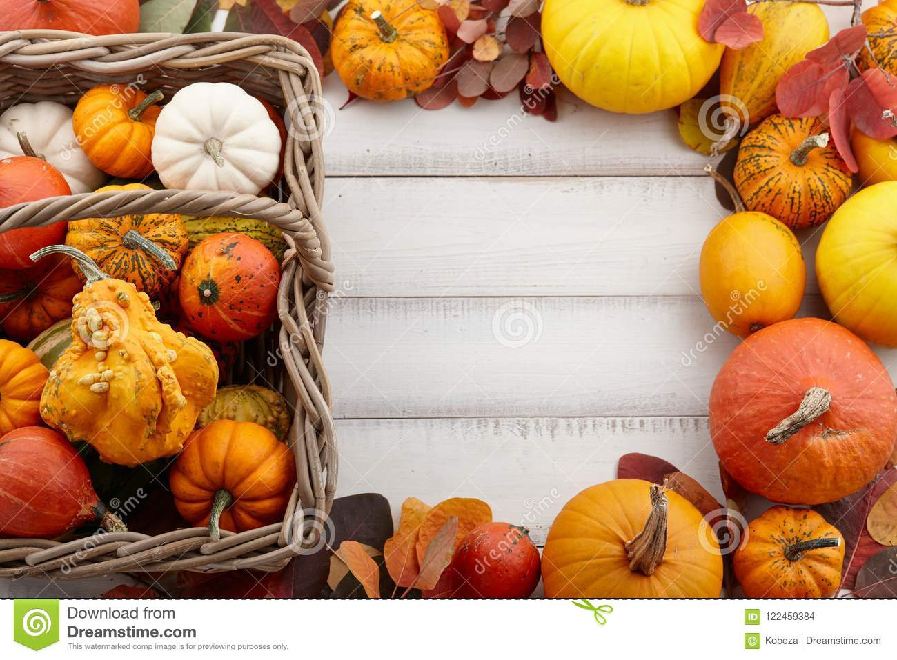 Basket With Colorful Pumpkins And Gourds For Halloween And