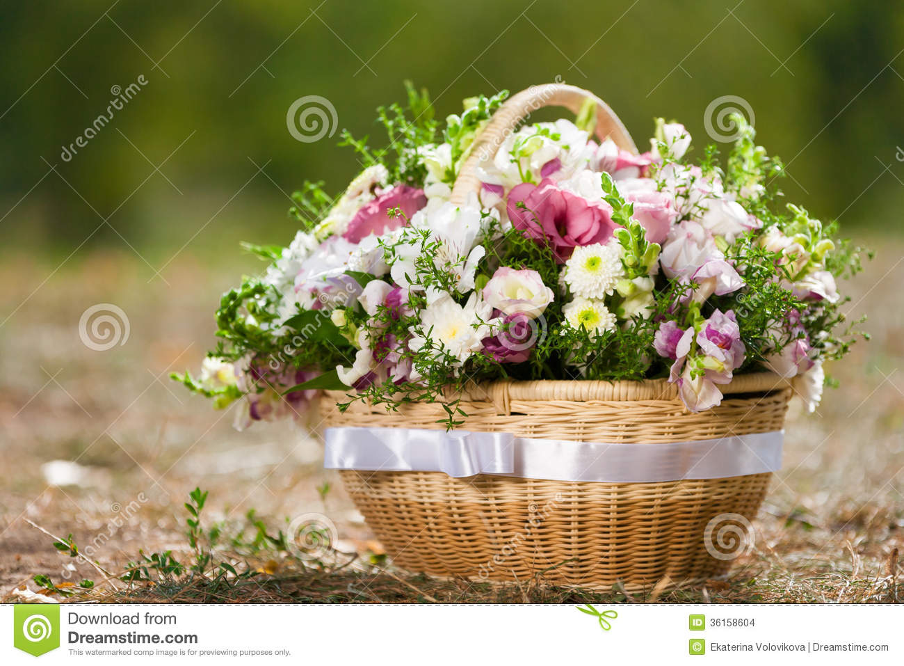 Basket With Flowers Stock Photo Image Of Romance Flowers 36158604