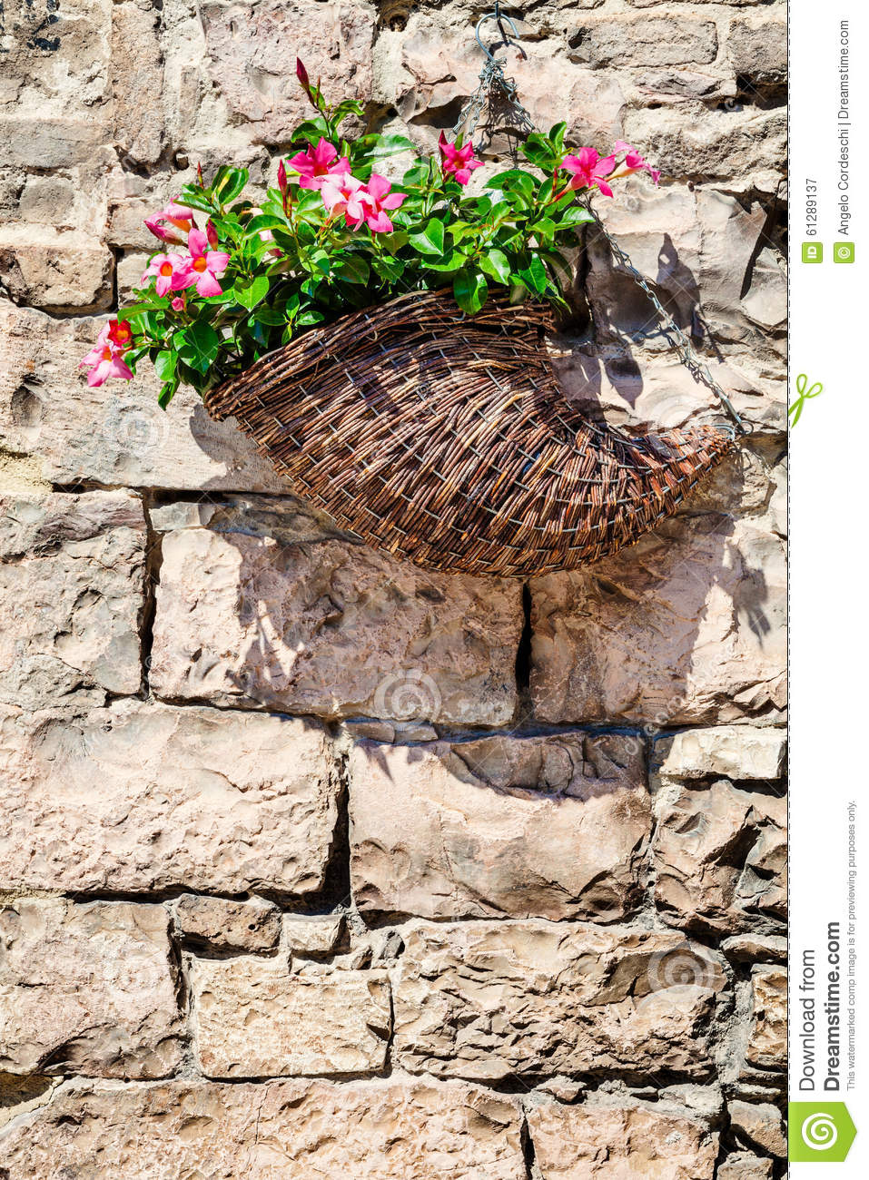 Basket Flowers Hanging On A Old Brick Wall Stones Stock