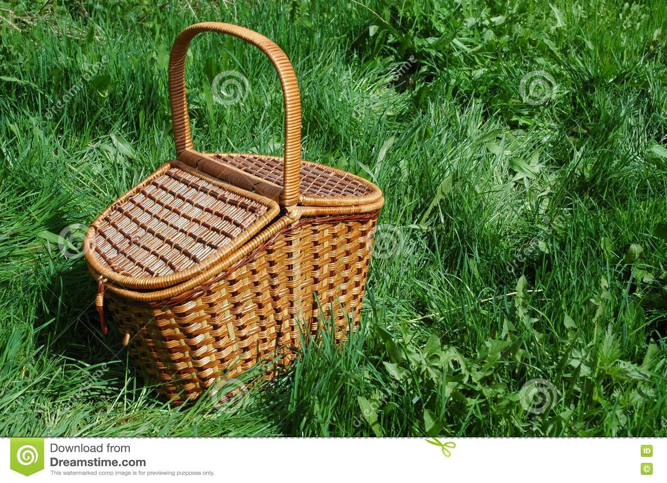 The Basket For Picnic Picture Image 331575