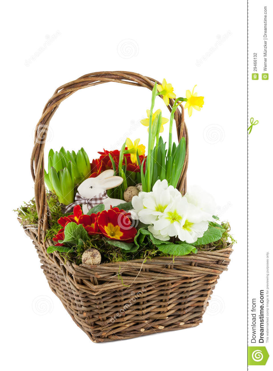 Basket With Spring Flowers Stock Photo Image Of White 29466132