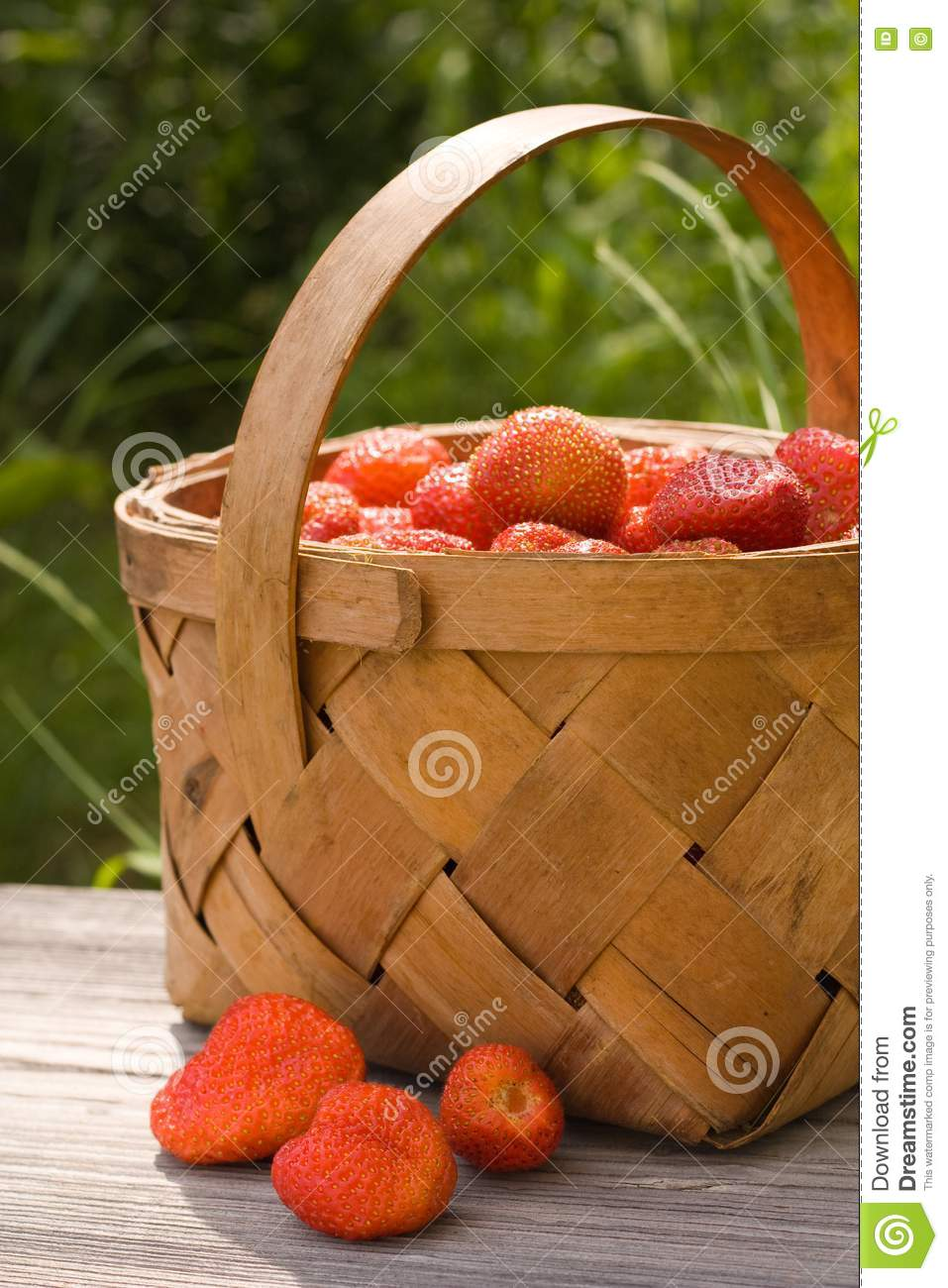 Basket of the strawberries stock image. Image of ripe ...
